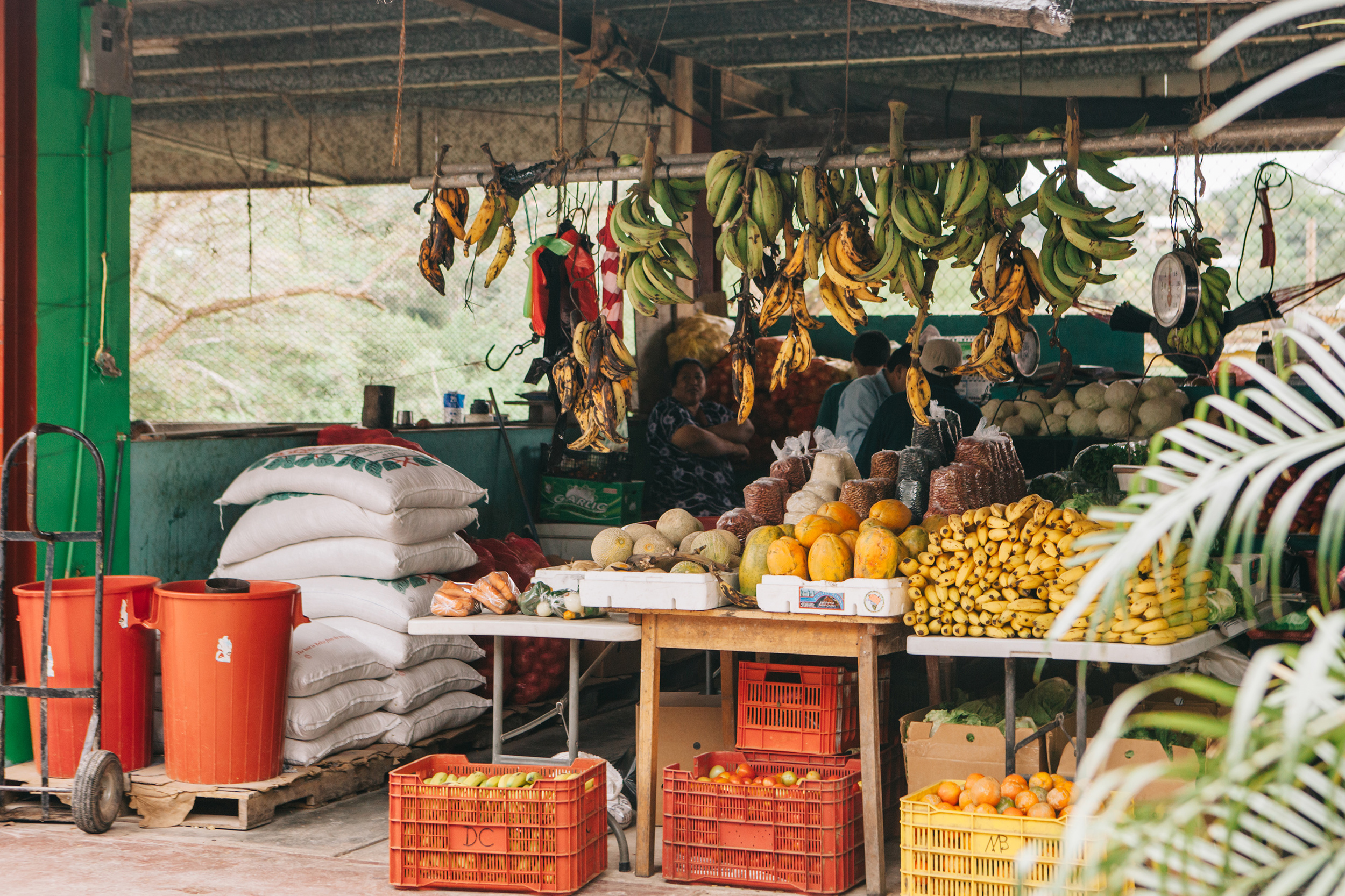 Belize_SanIgnacio_Market_travel_local_food-001.jpg