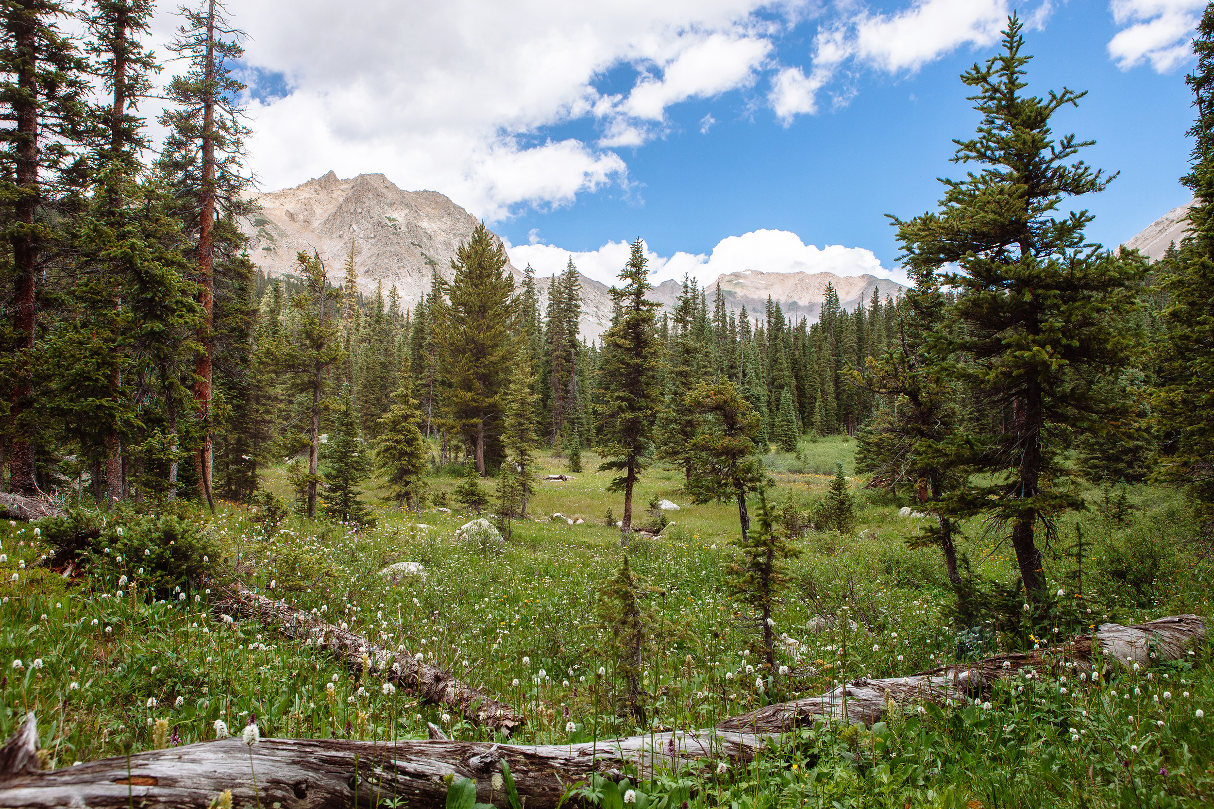 The Collegiate Range near Buena Vista, Colorado