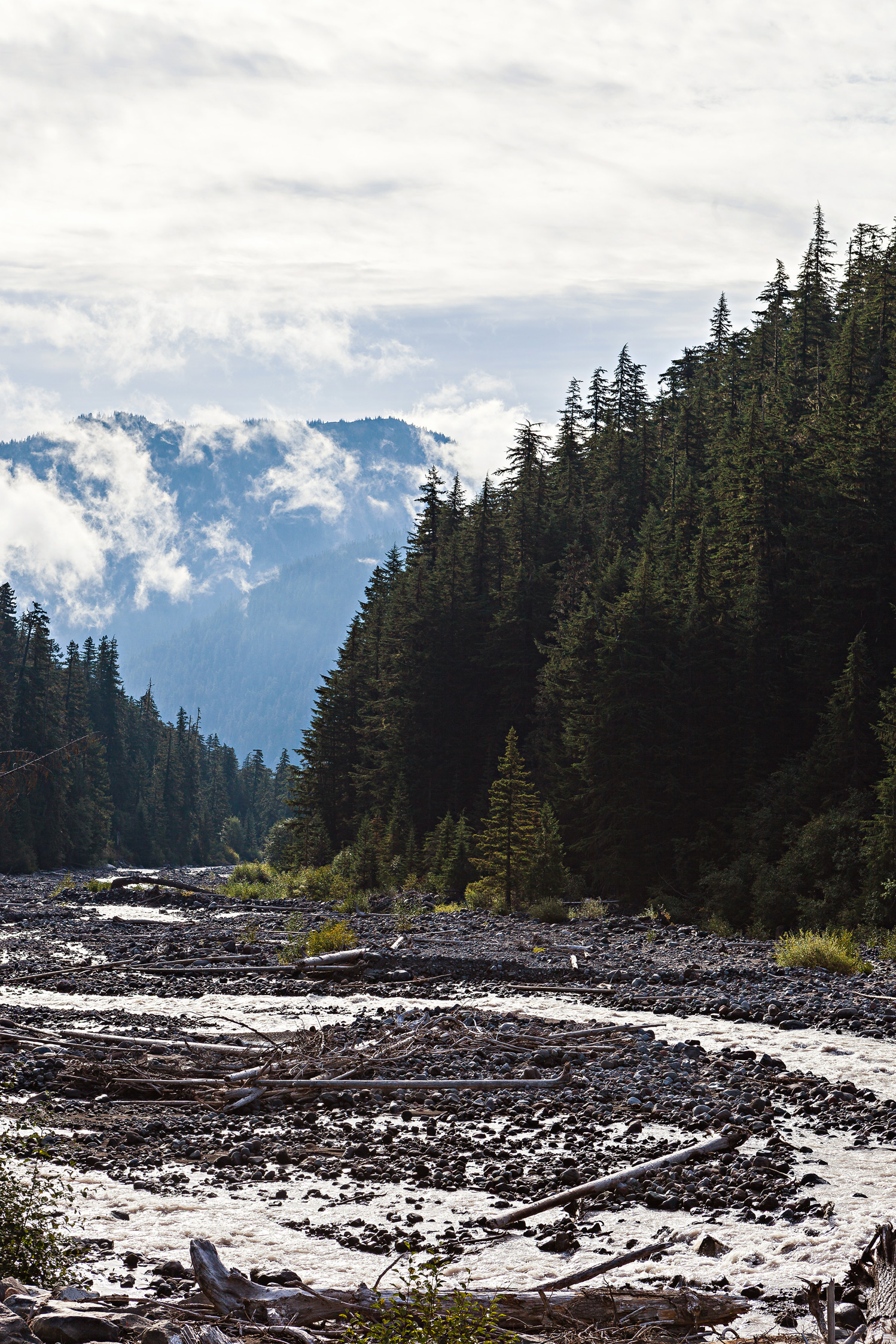 CindyGiovagnoli_MountRainier_Olympic_NationalPark_HohRainforest_Washington_MRNP_Camping-058.jpg