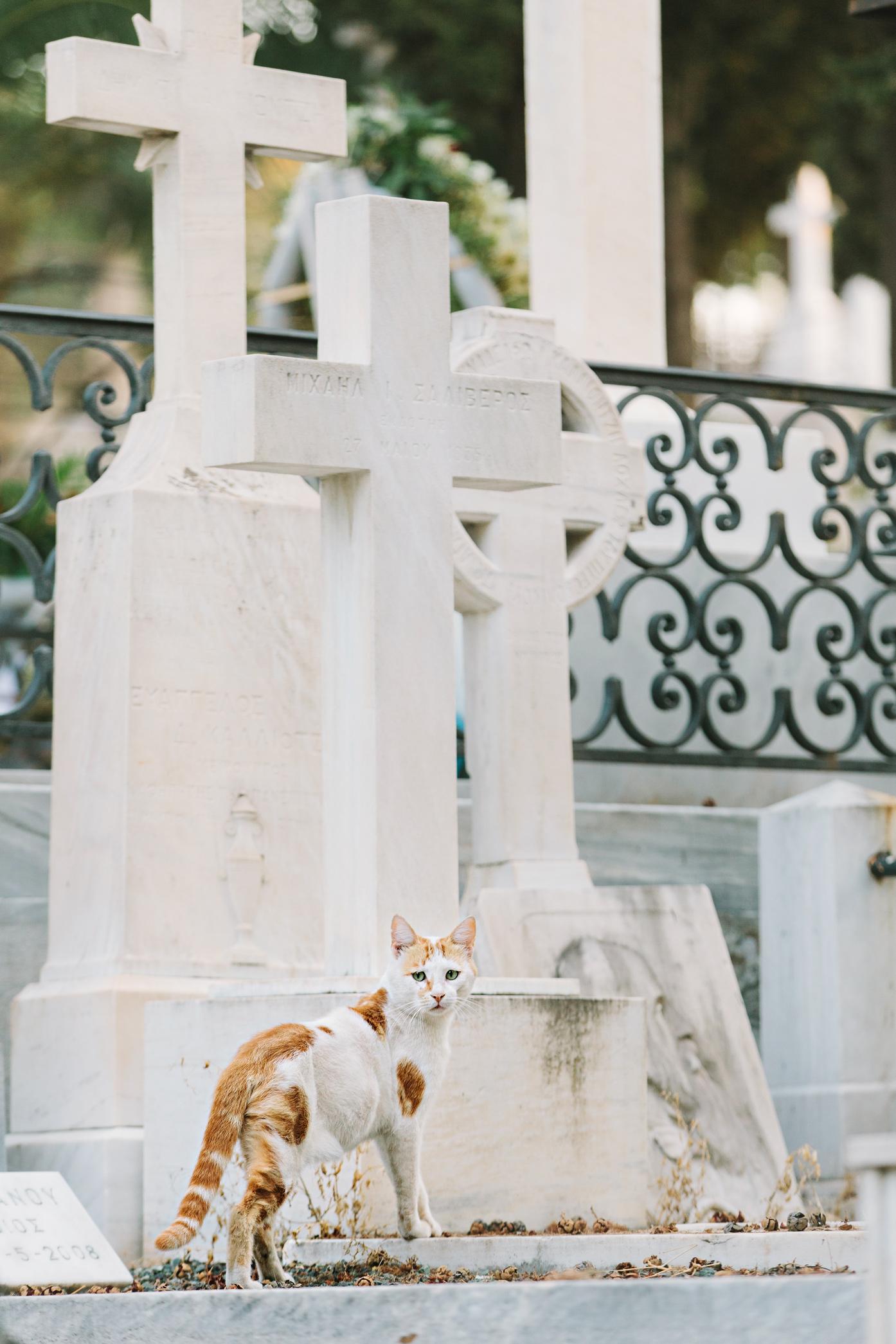 CindyGiovagnoli_Athens_Greece_travel_photographer-110.jpg