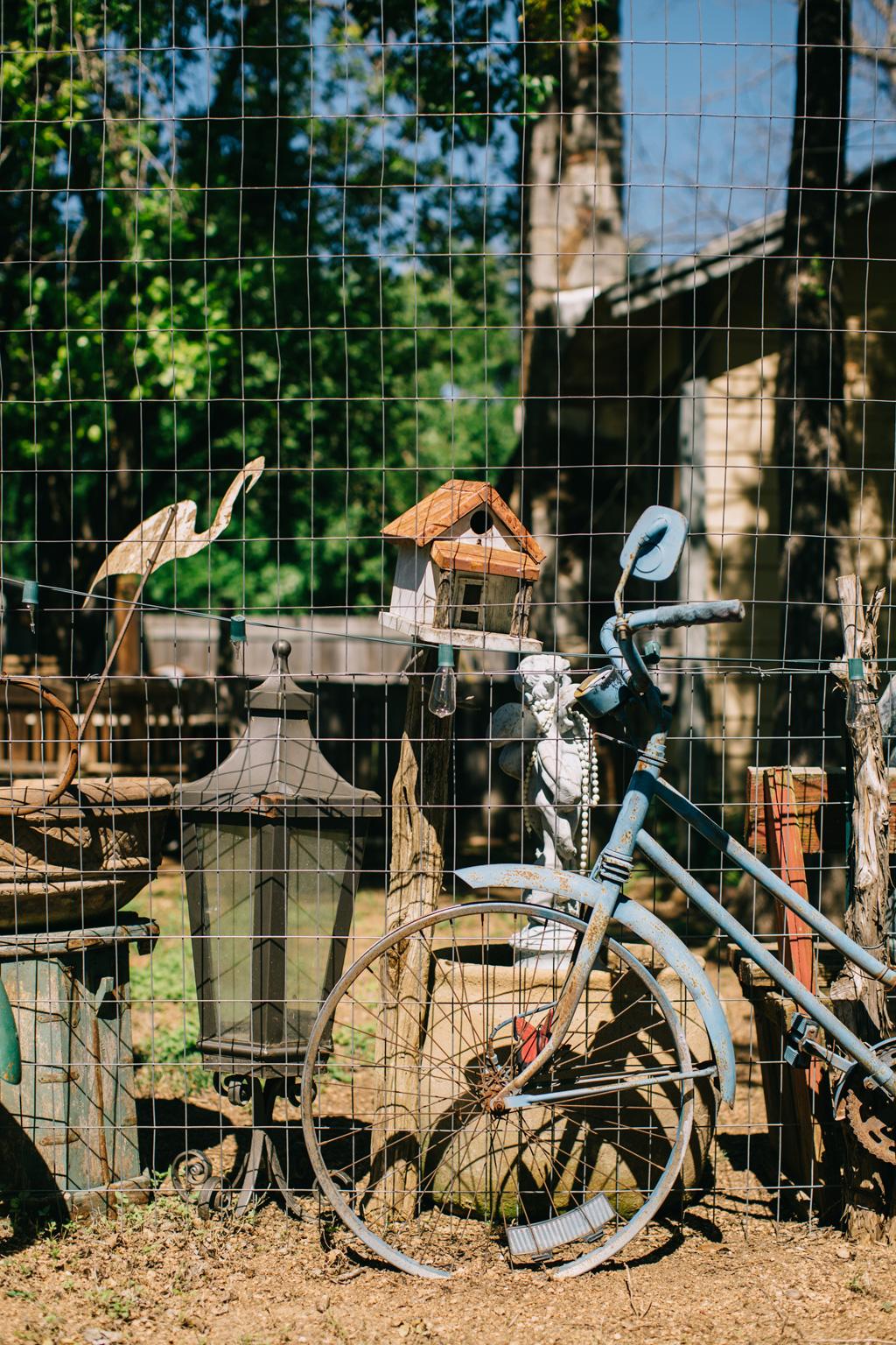 CindyGiovagnoli_Texas_Wimberly_Gruene_Cypress_Creek_HillCountry_outdoors-012.jpg