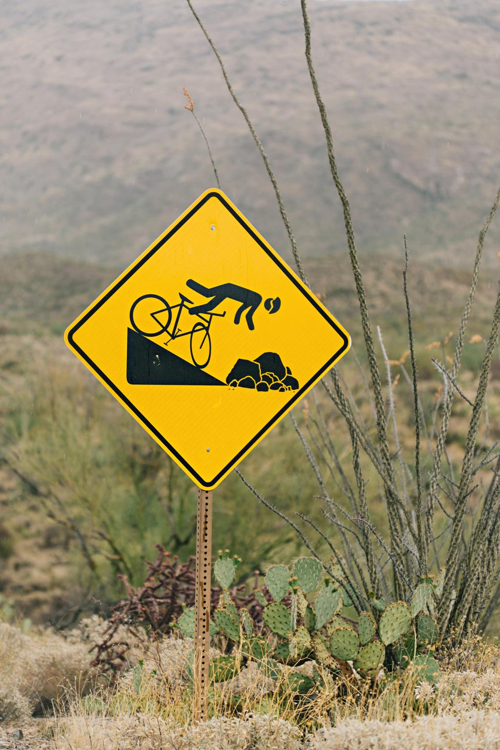 CindyGiovagnoli_Saguaro_National_Park_Arizona_desert_cactus_bloom_flowers-004.jpg