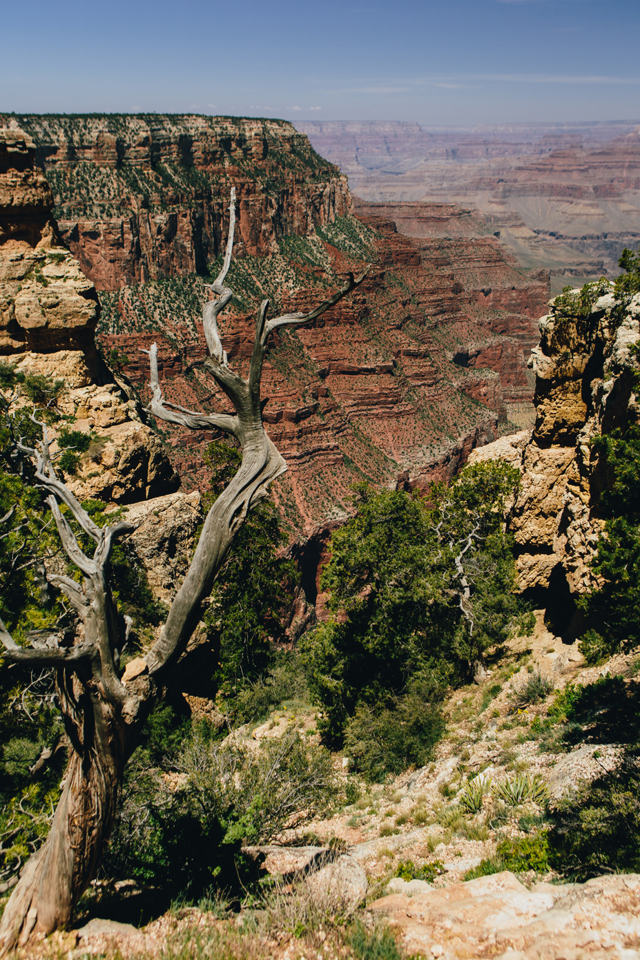 CindyGiovagnoli_GrandCanyon_NationalPark_Arizona_travel_roadtrip-004.jpg