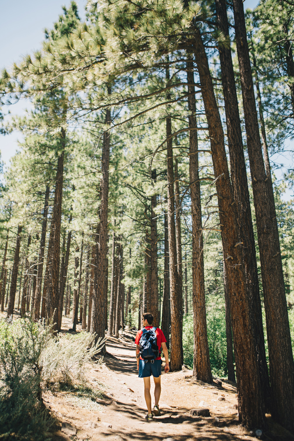 CindyGiovagnoli_Galena_Creek_Visitors_Center_hike_Reno_Tahoe_Nevada_outdoor_activities-003.jpg