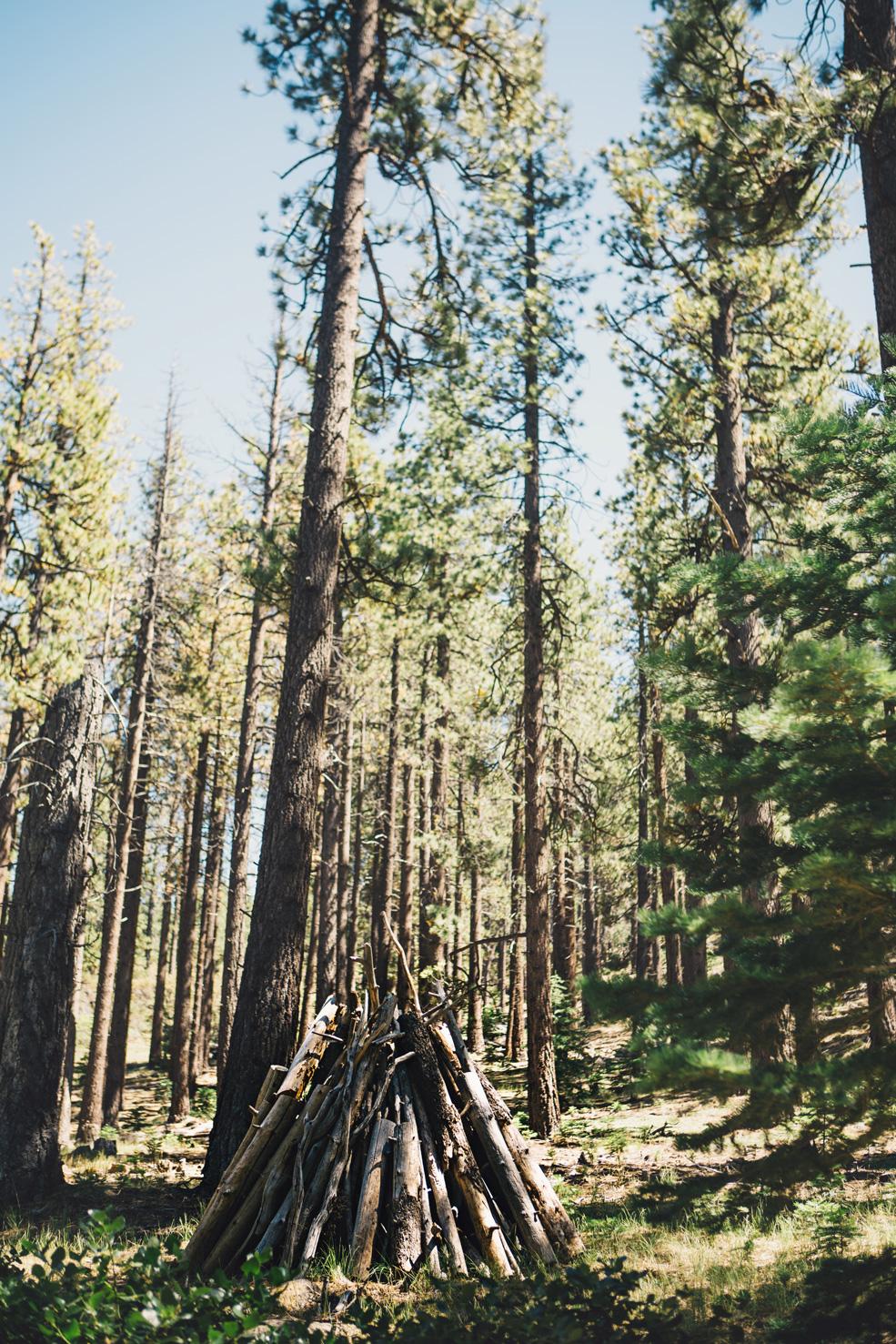 CindyGiovagnoli_Galena_Creek_Visitors_Center_hike_Reno_Tahoe_Nevada_outdoor_activities-004.jpg