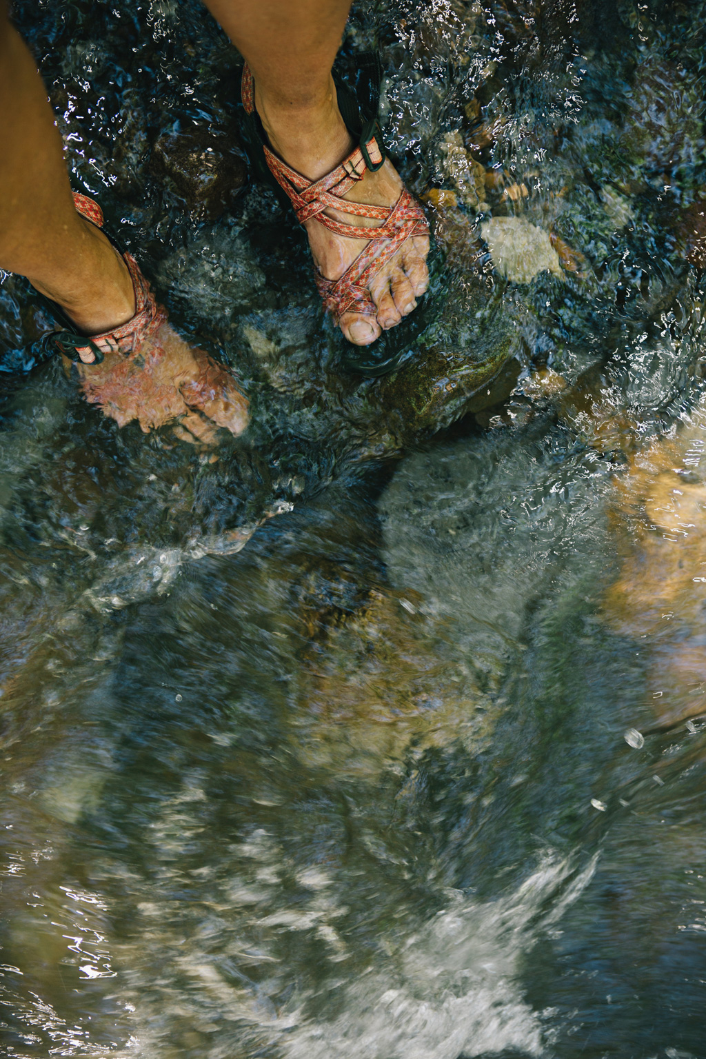 CindyGiovagnoli_Galena_Creek_Visitors_Center_hike_Reno_Tahoe_Nevada_outdoor_activities-010.jpg