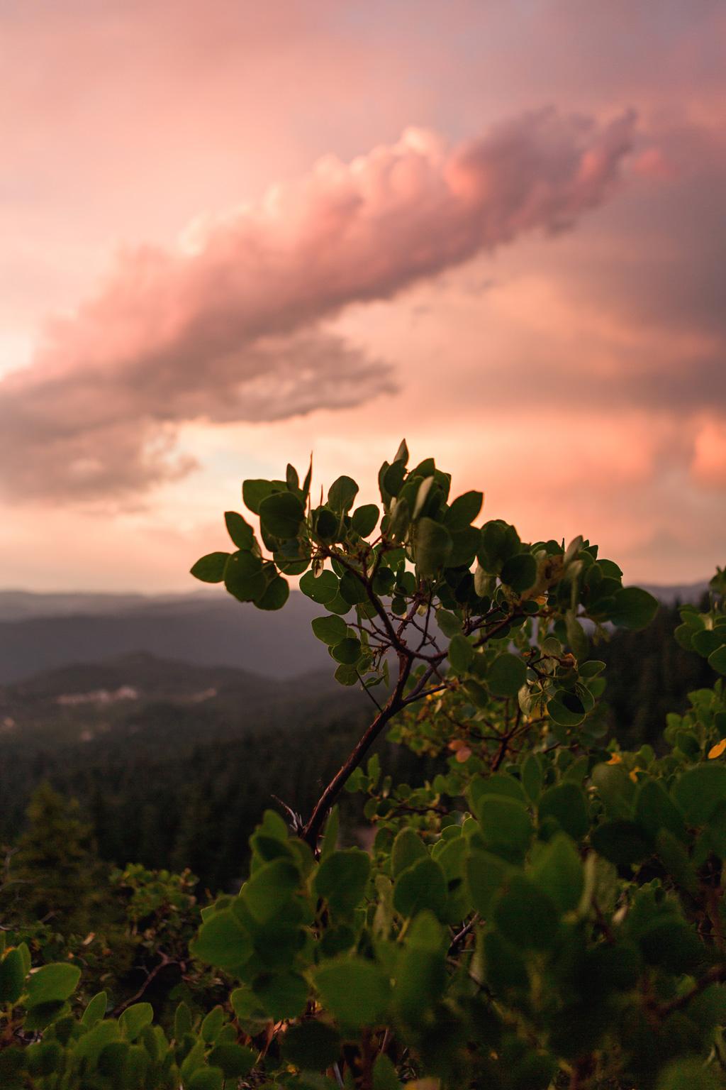 CindyGiovagnoli_California_Nevada_photographer_NevadaCity_PerseidMeteorShower_StampedeReservoir_truck_camping_VirginiaCity_MarkTwain_sunset-014.jpg