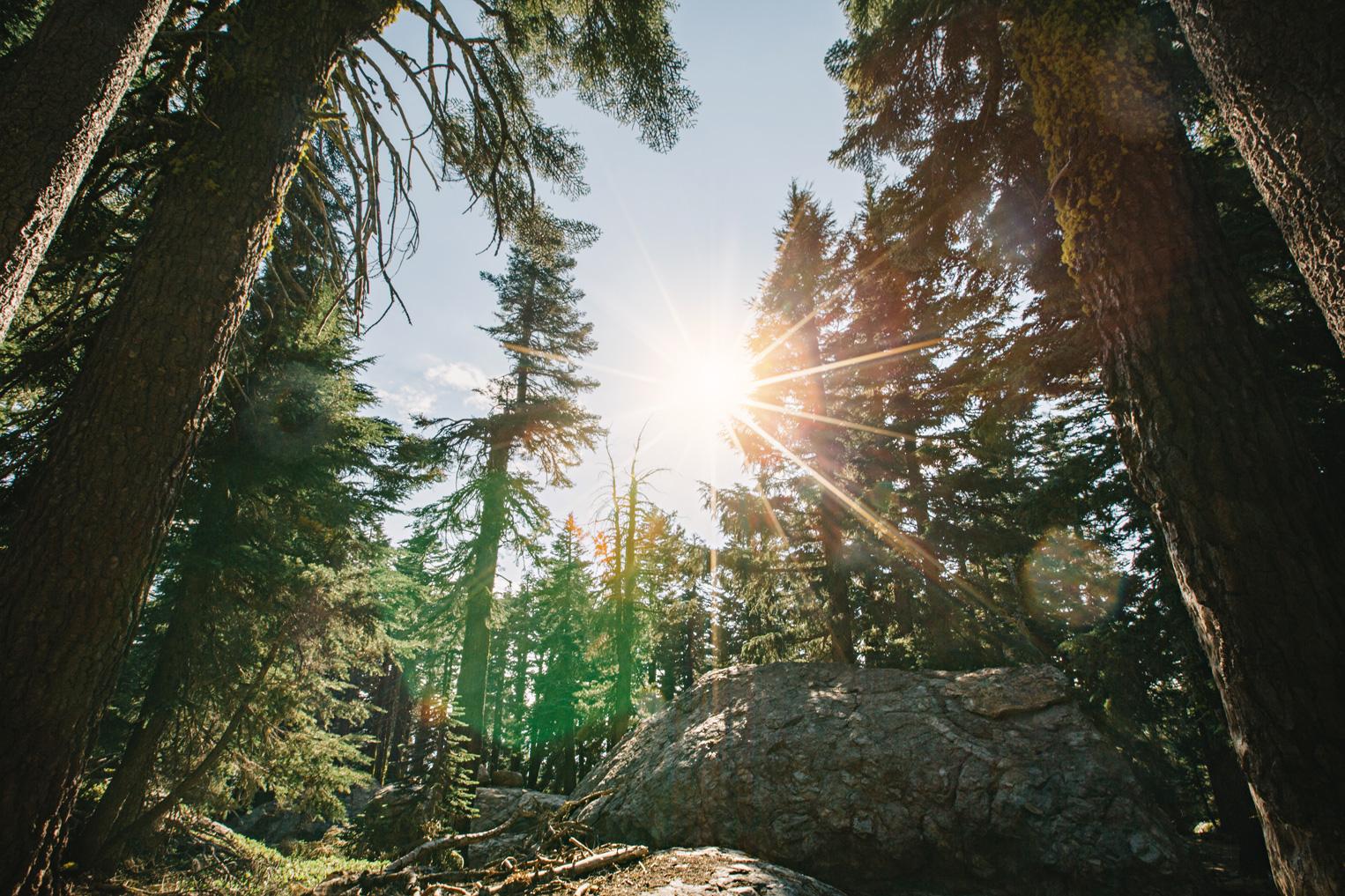 CindyGiovagnoli_outdoors_photographer_Sierra_Buttes_firetower_watchtower_Sardine_Snag_Bear_lake_hike_swim_camp-041.jpg
