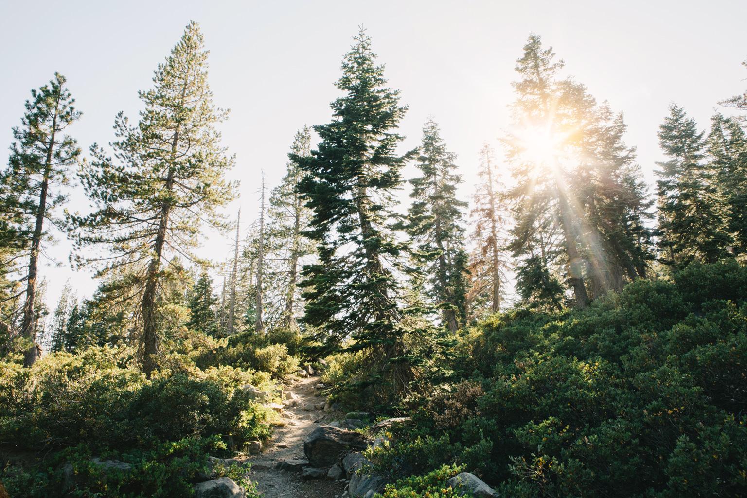 CindyGiovagnoli_outdoors_photographer_Sierra_Buttes_firetower_watchtower_Sardine_Snag_Bear_lake_hike_swim_camp-068.jpg