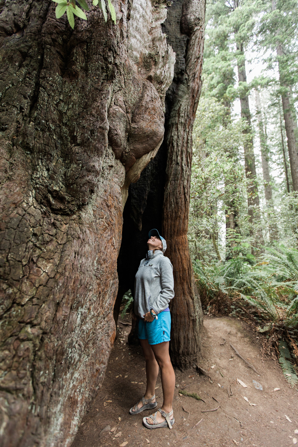 CindyGiovagnoli_Redwoods_CraterLake_MountRainier_PNW_National_Park_trees_camp_road_trip-014.jpg