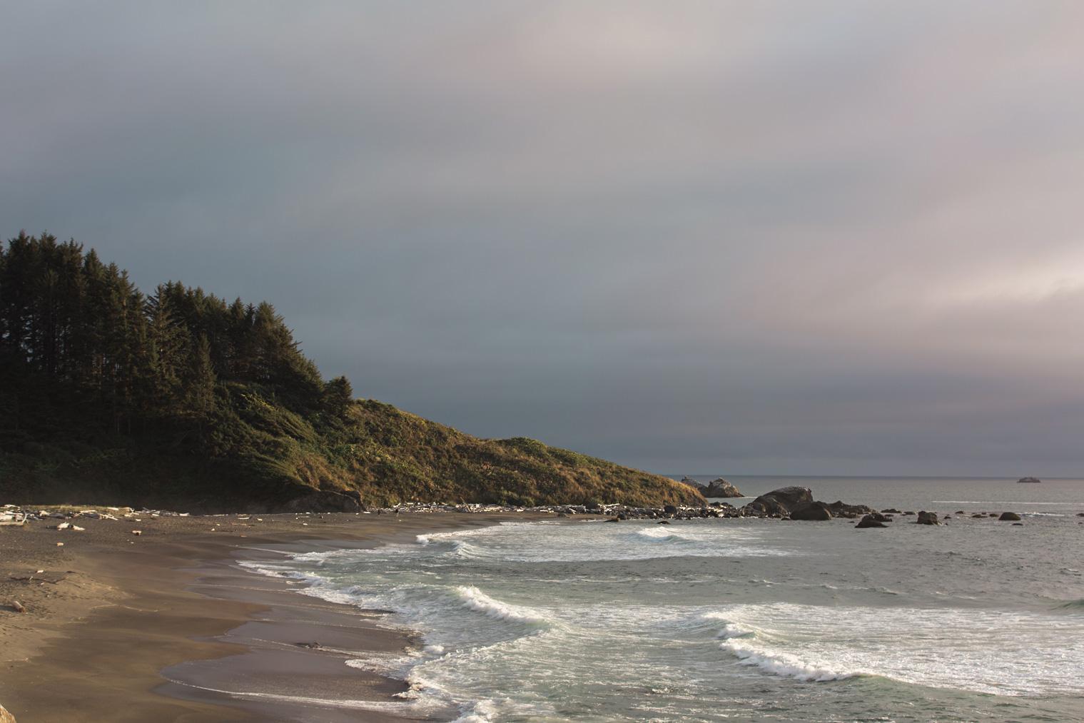CindyGiovagnoli_Crater_Lake_National_Park_Cape_Perpetua_Heceta_Head_lighthouse_Pacific_Ocean_Cannon_Beach_haystack_Oregon_coast-006.jpg