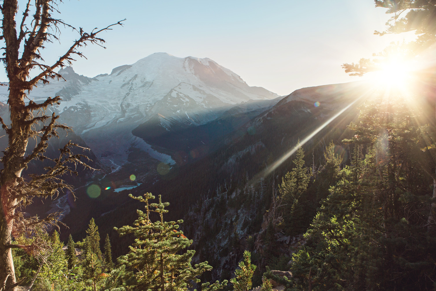 CindyGiovagnoli_Mount_Rainier_National_Park_Washington-001.jpg