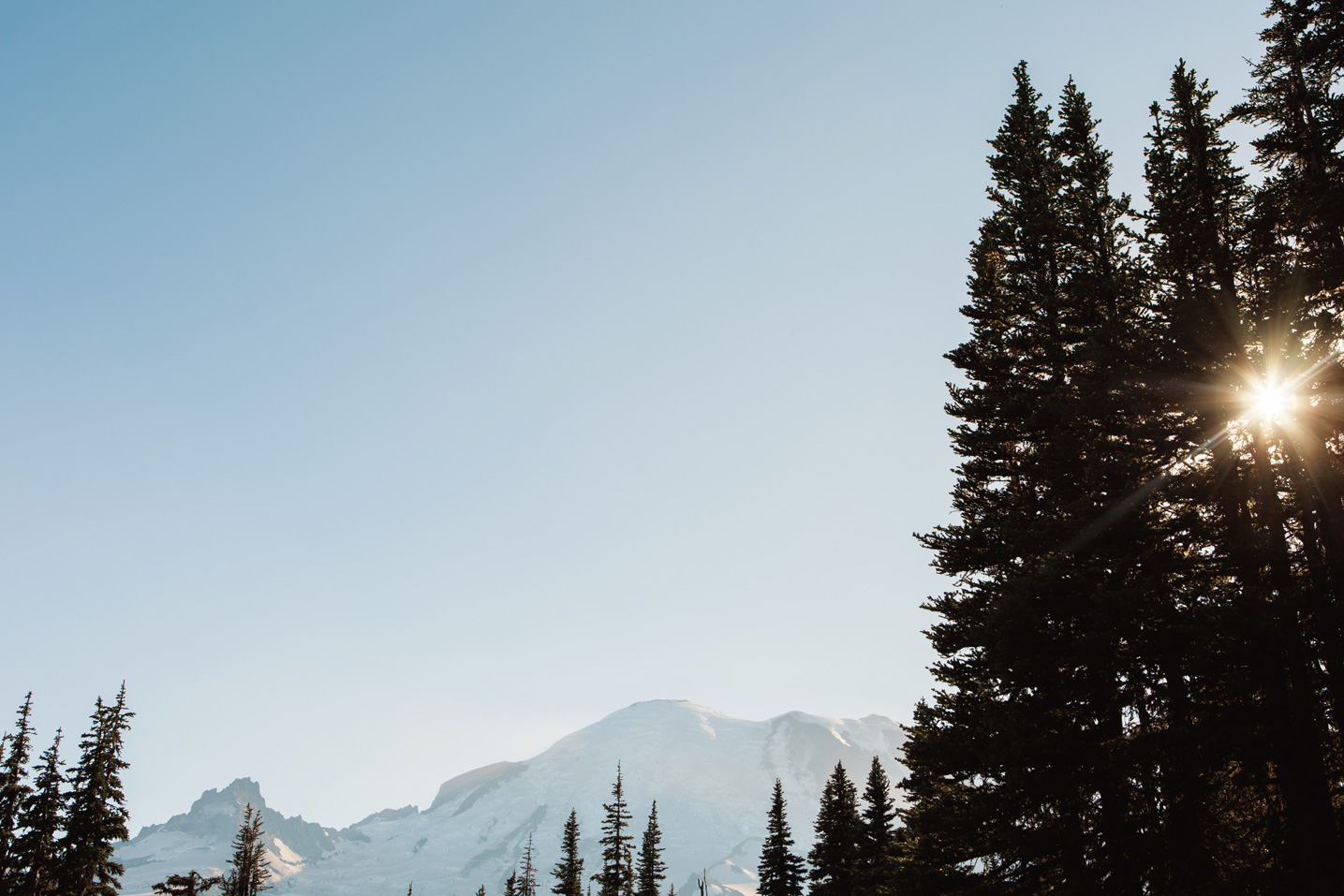 CindyGiovagnoli_Mount_Rainier_National_Park_Washington-008.jpg