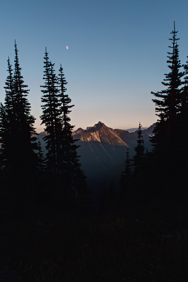 CindyGiovagnoli_Mount_Rainier_National_Park_Washington-010.jpg