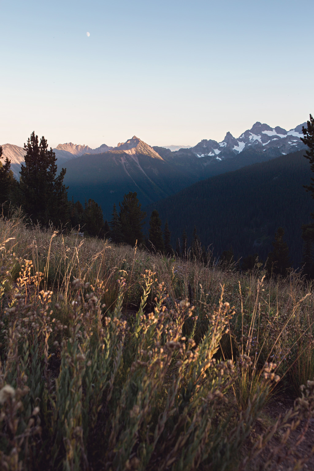 CindyGiovagnoli_Mount_Rainier_National_Park_Washington-013.jpg