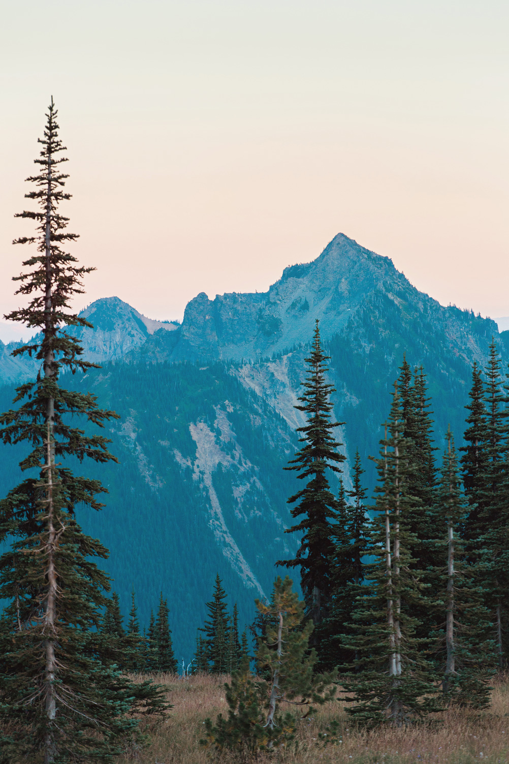 CindyGiovagnoli_Mount_Rainier_National_Park_Washington-024.jpg