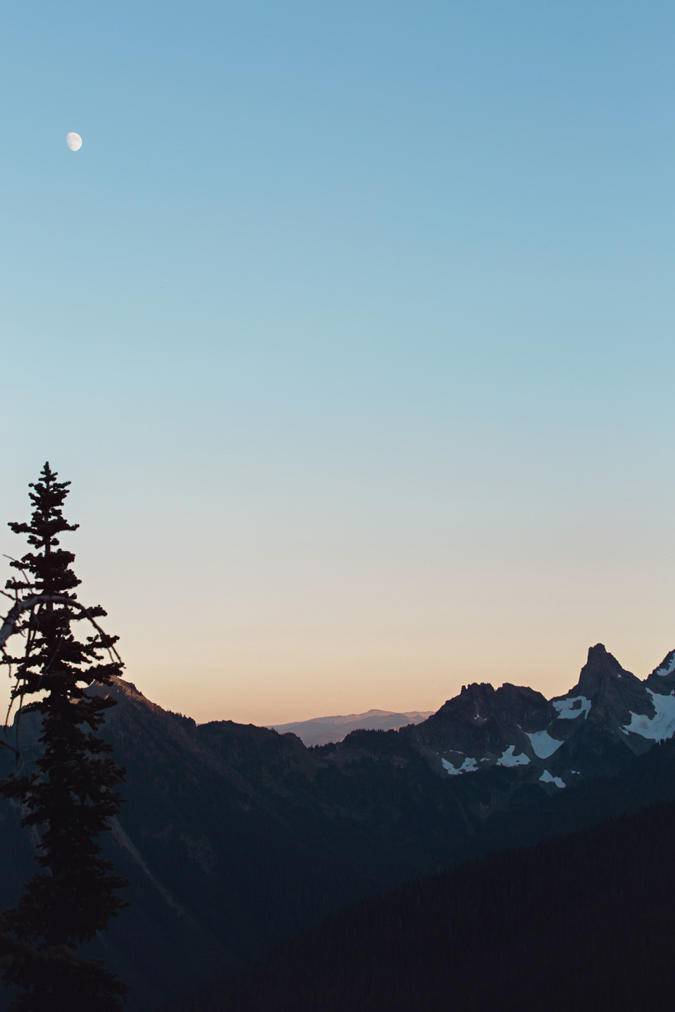 CindyGiovagnoli_Mount_Rainier_National_Park_Washington-030.jpg