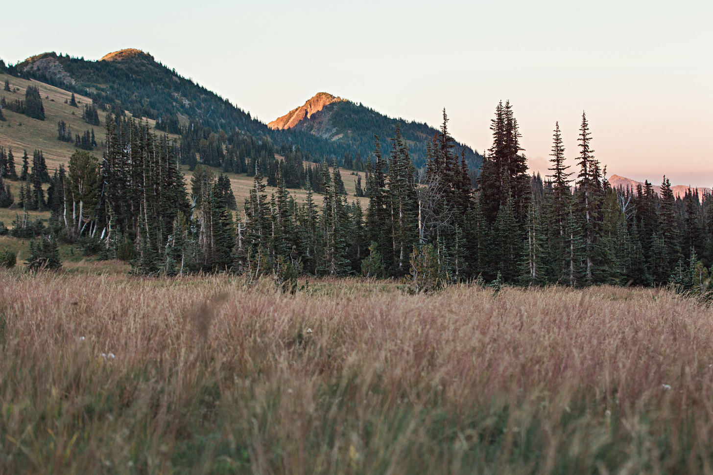 CindyGiovagnoli_Mount_Rainier_National_Park_Washington-035.jpg