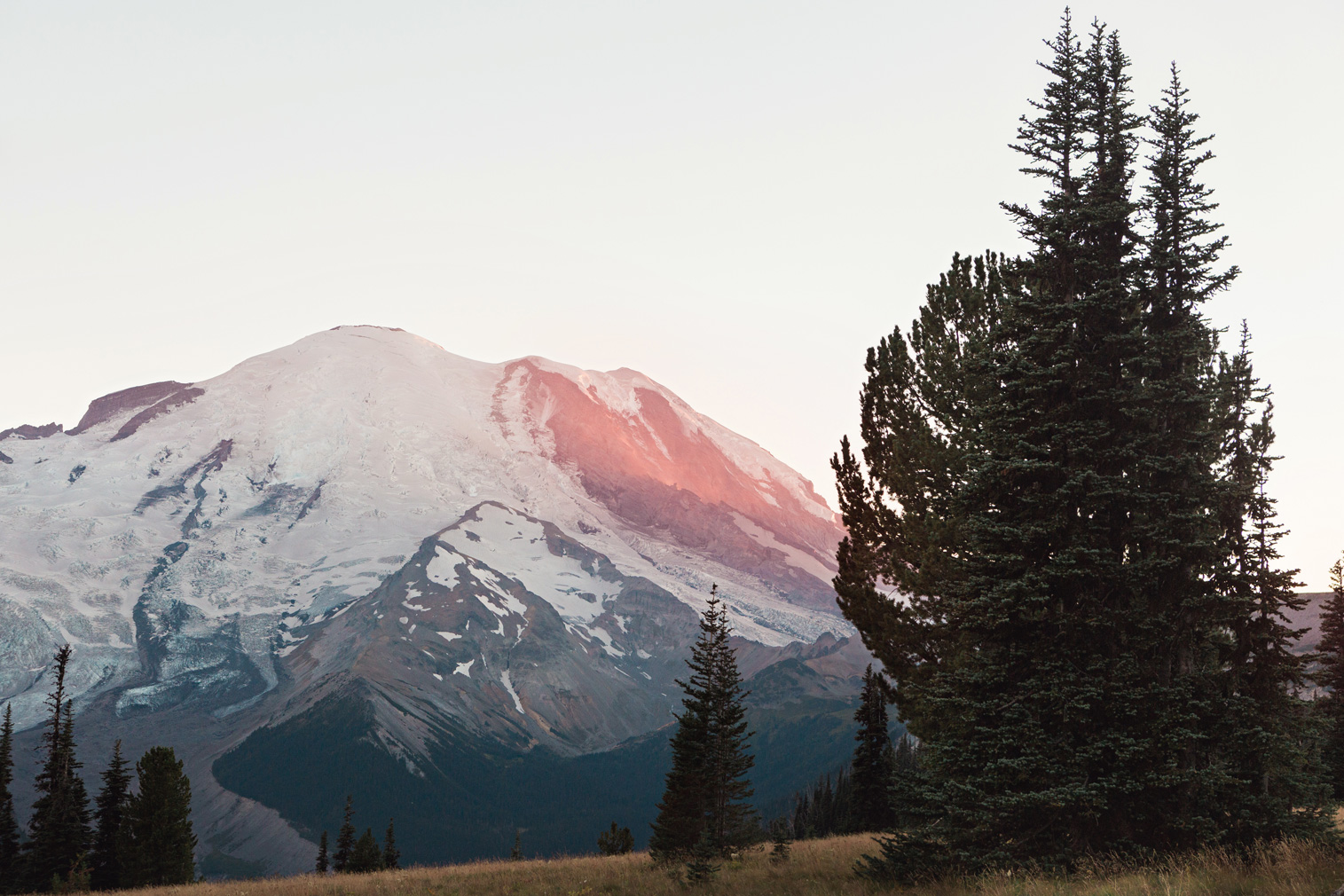 CindyGiovagnoli_Mount_Rainier_National_Park_Washington-036.jpg