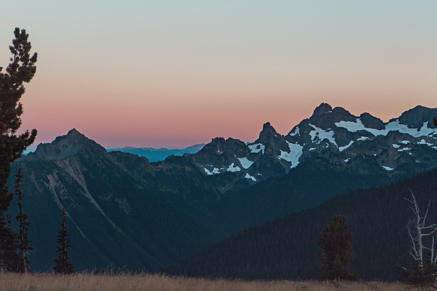 CindyGiovagnoli_Mount_Rainier_National_Park_Washington-038.jpg