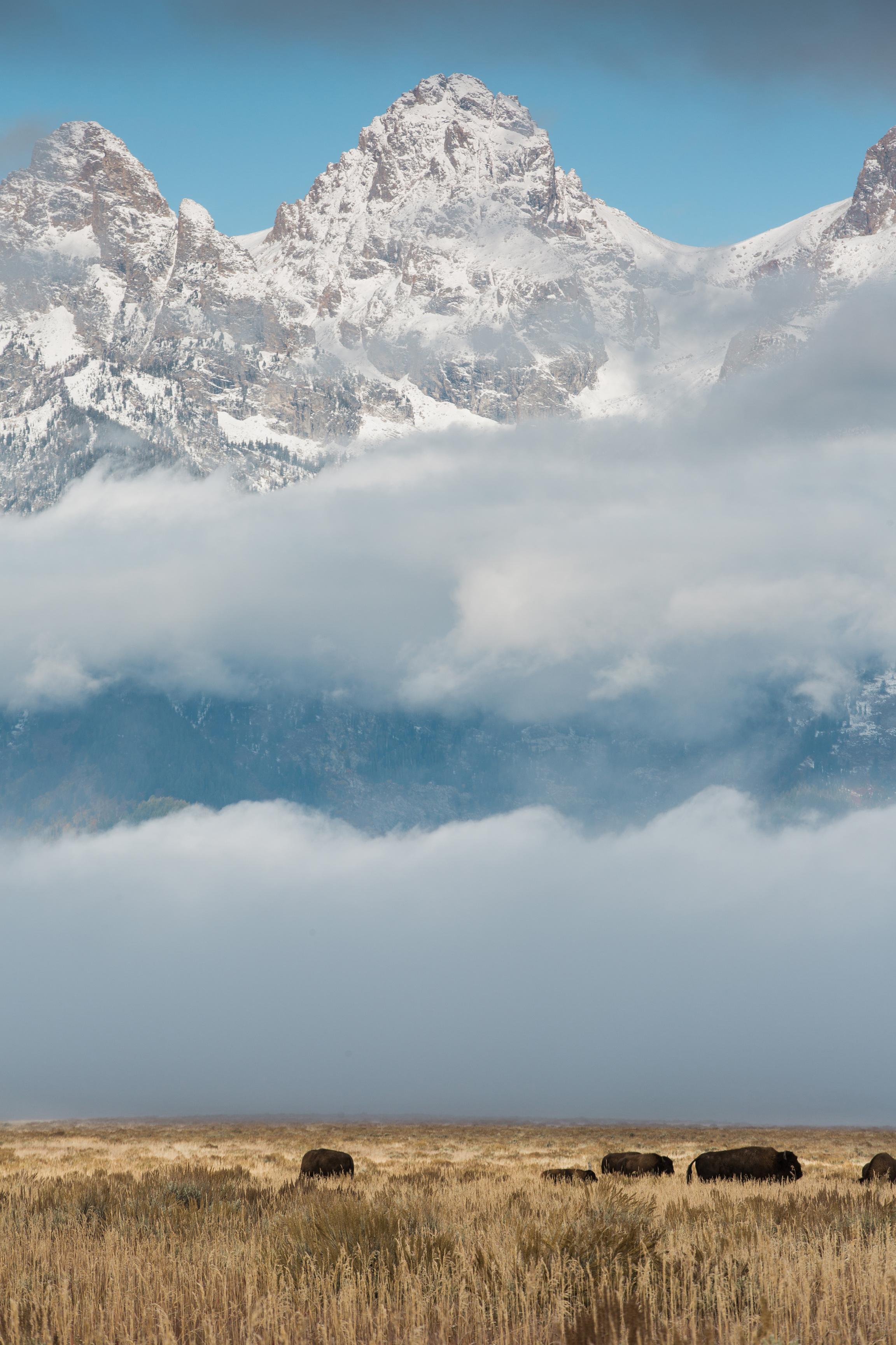 CindyGiovagnoli_outdoor_adventure_photography_Grand_Teton_Yellowstone_Glacier_National_Park_Montana_Wyoming_South_Dakota_Mount_Rushmore_Badlands-009.jpg