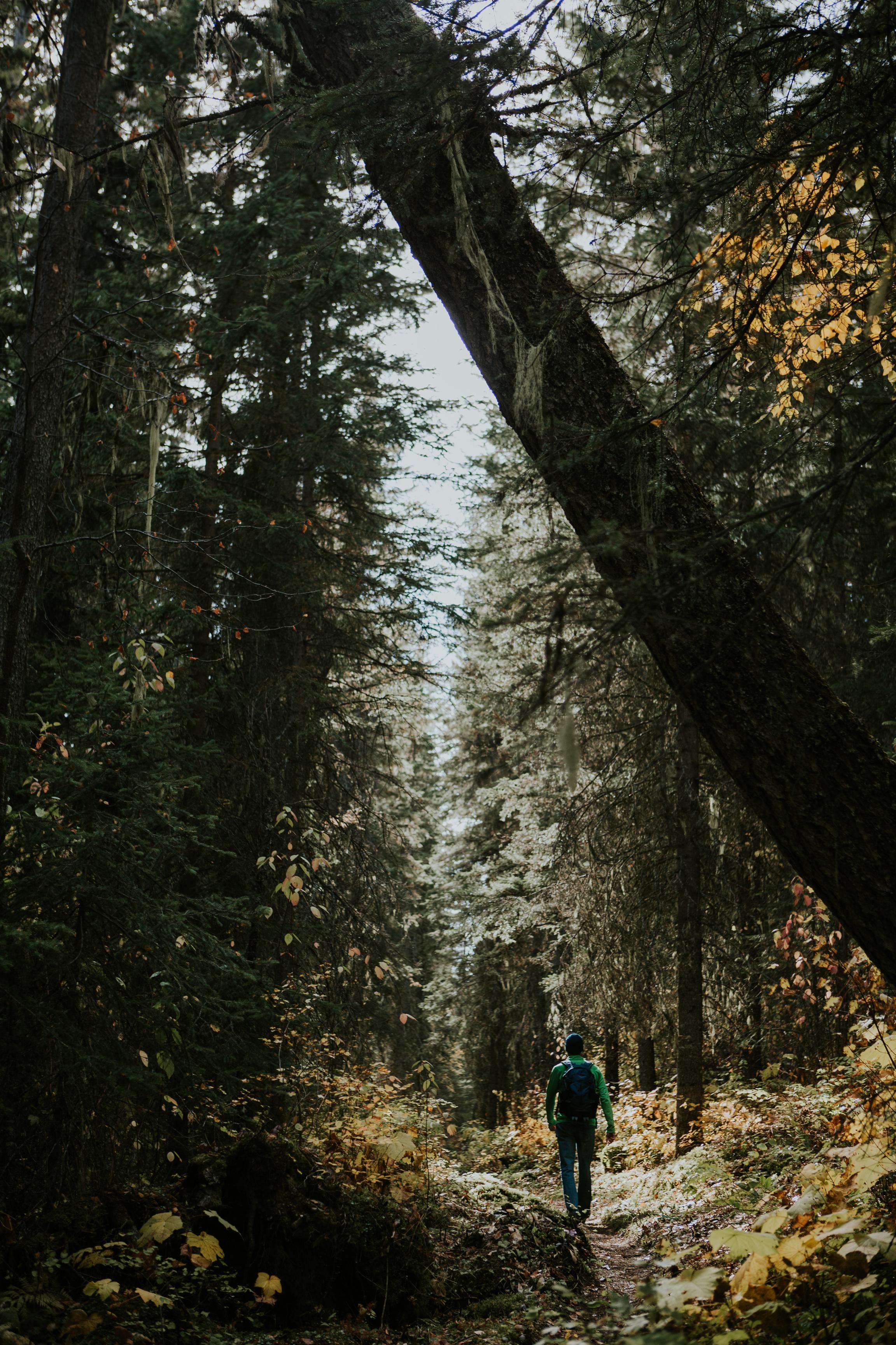 CindyGiovagnoli_outdoor_adventure_photography_Grand_Teton_Yellowstone_Glacier_National_Park_Montana_Wyoming_South_Dakota_Mount_Rushmore_Badlands-010.jpg