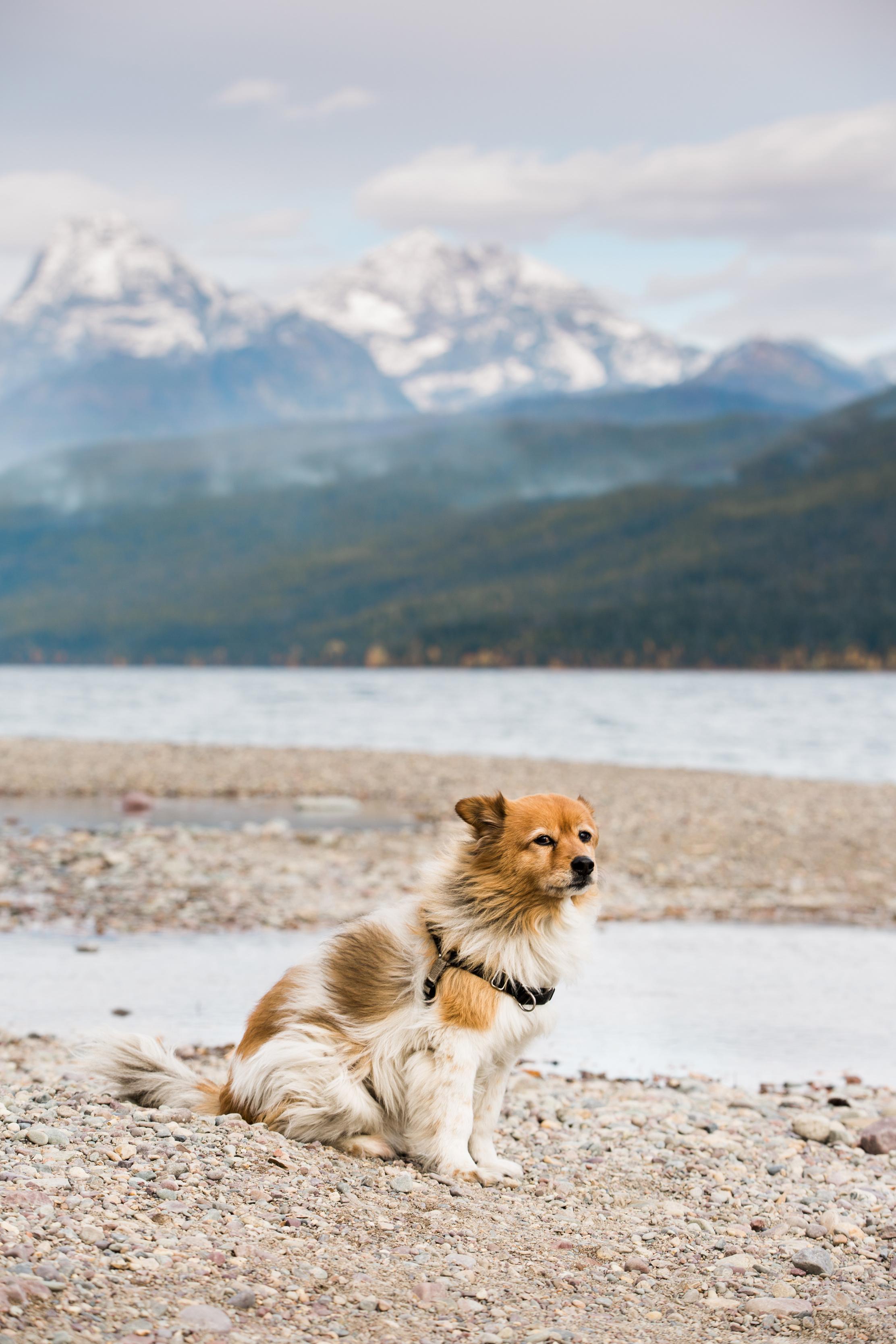 CindyGiovagnoli_outdoor_adventure_photography_Grand_Teton_Yellowstone_Glacier_National_Park_Montana_Wyoming_South_Dakota_Mount_Rushmore_Badlands-019.jpg