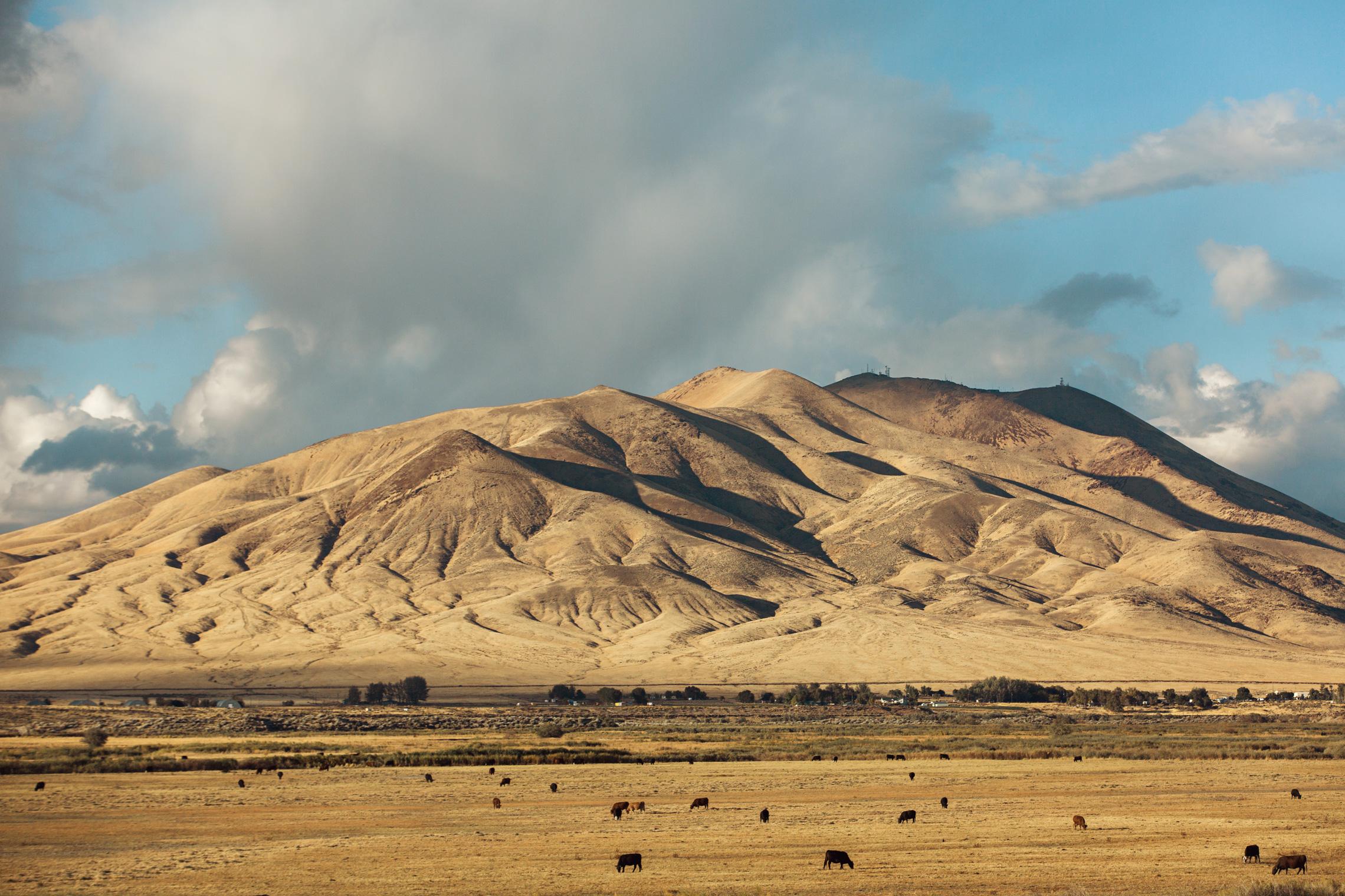 CindyGiovagnoli_road_trip_Nevada_Idaho-005.jpg