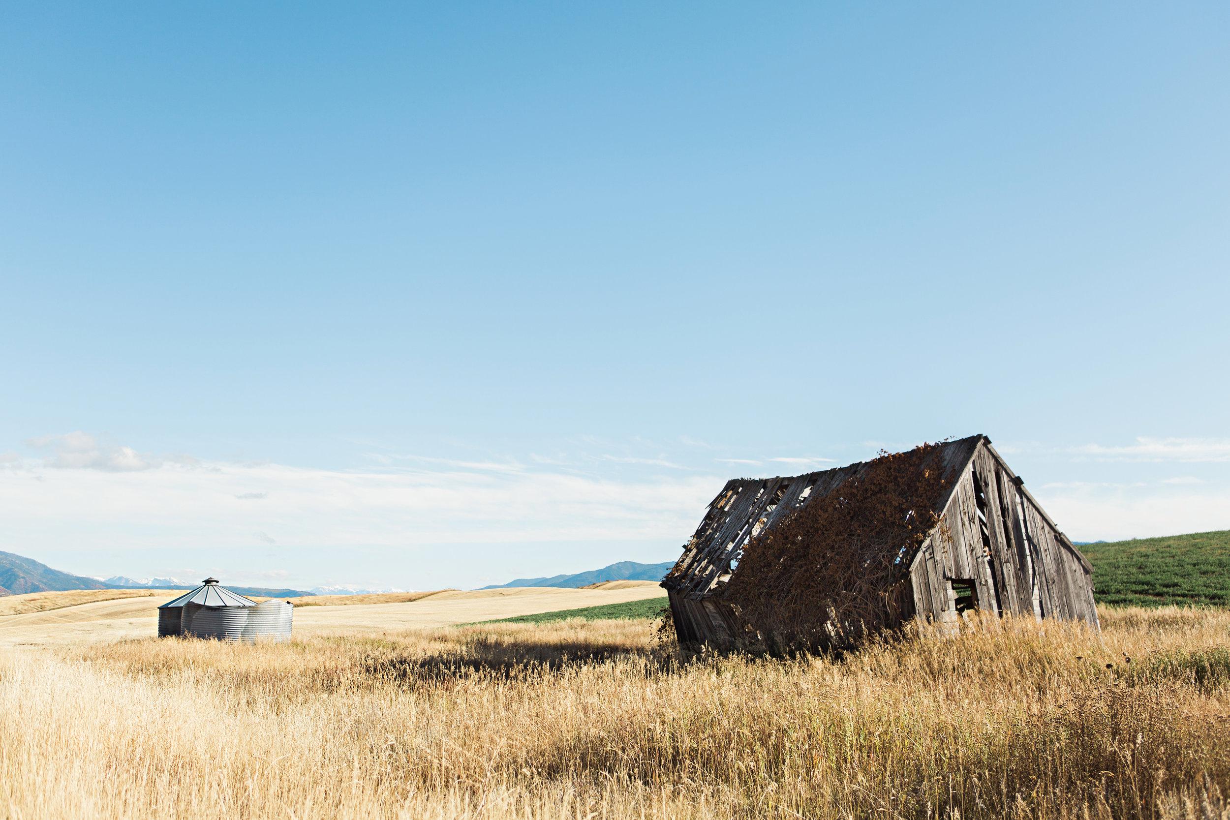 Cindy_Giovagnoli_Idaho_Wyoming_Grand_Teton_National_Park_autumn_aspens_camping_mountains-001.jpg