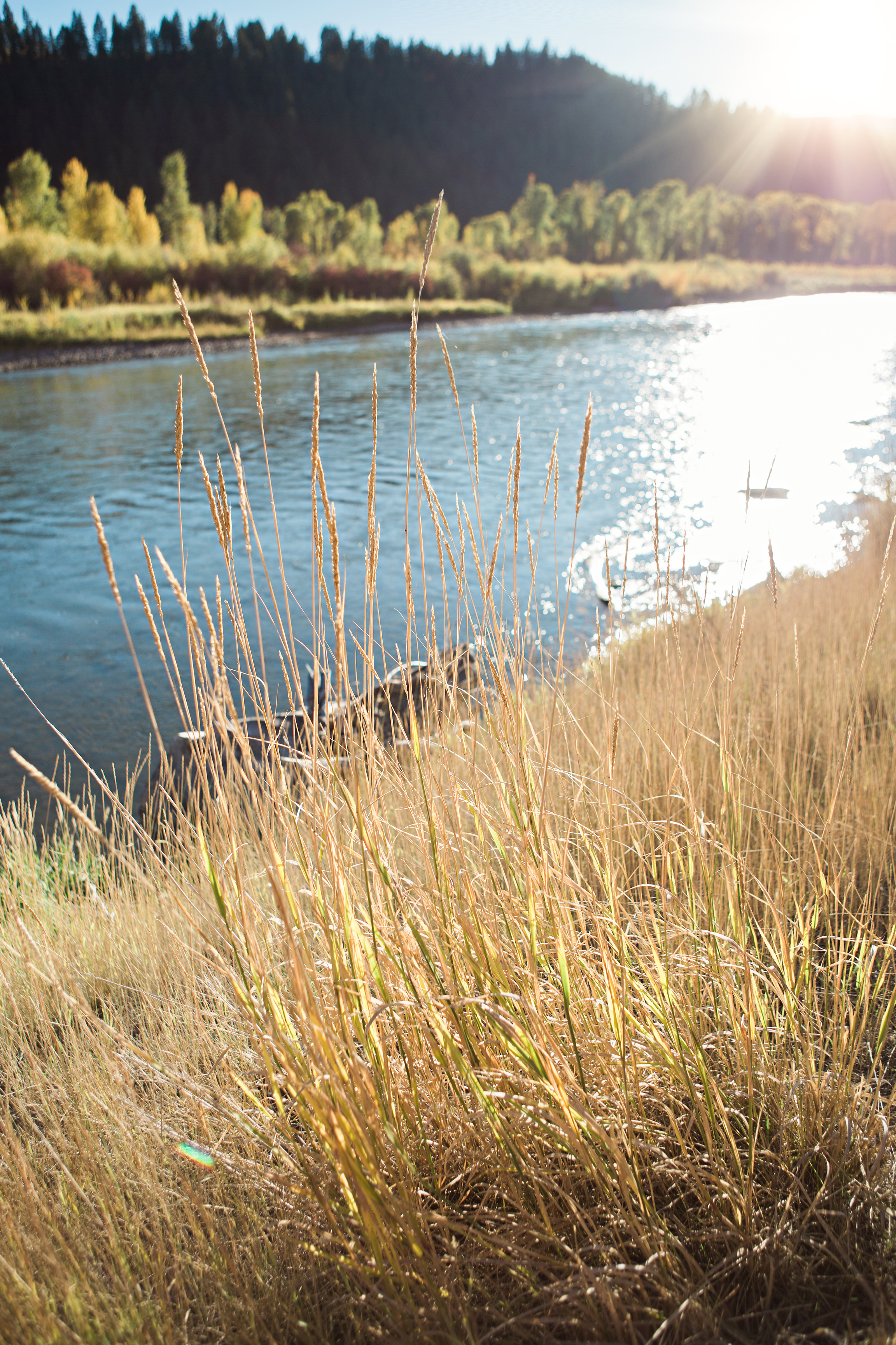 Cindy_Giovagnoli_Idaho_Wyoming_Grand_Teton_National_Park_autumn_aspens_camping_mountains-006.jpg