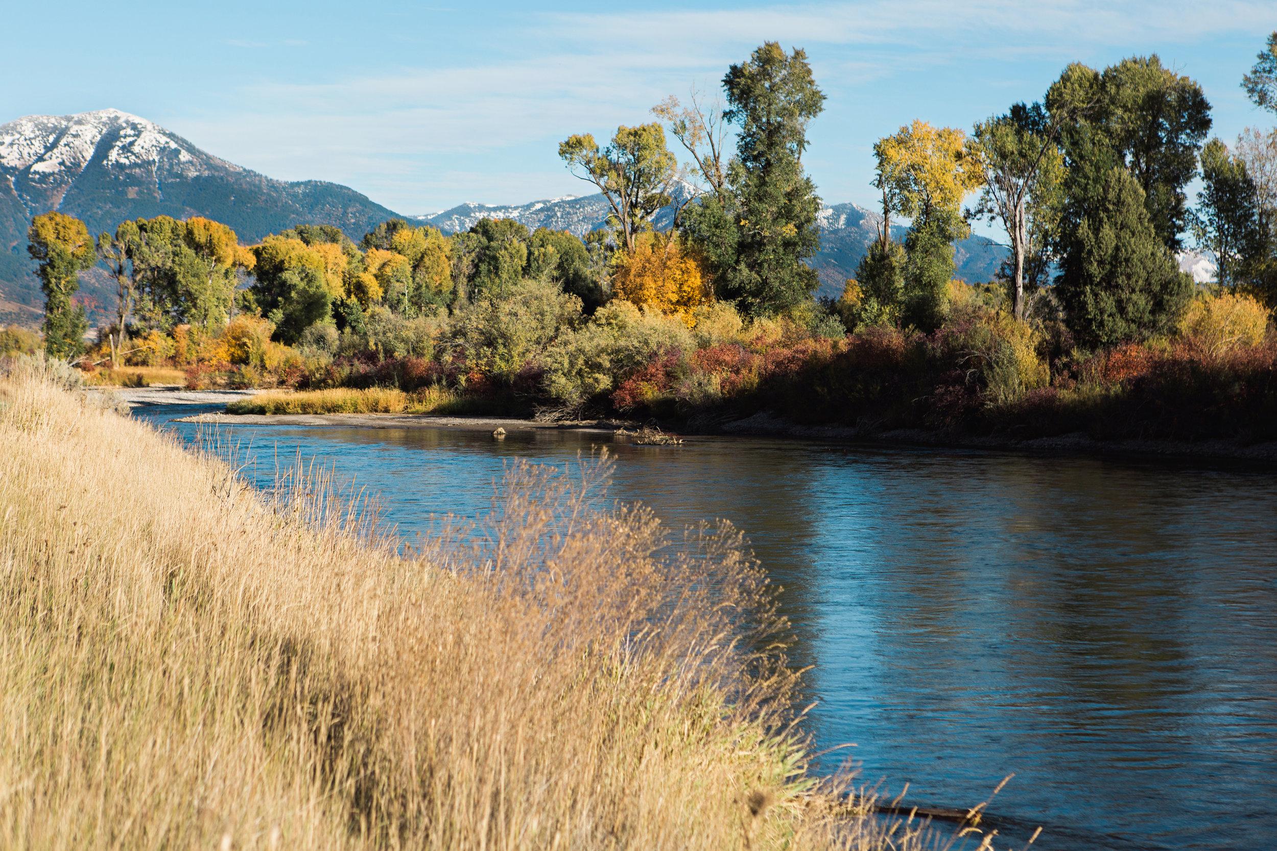 Cindy_Giovagnoli_Idaho_Wyoming_Grand_Teton_National_Park_autumn_aspens_camping_mountains-008.jpg