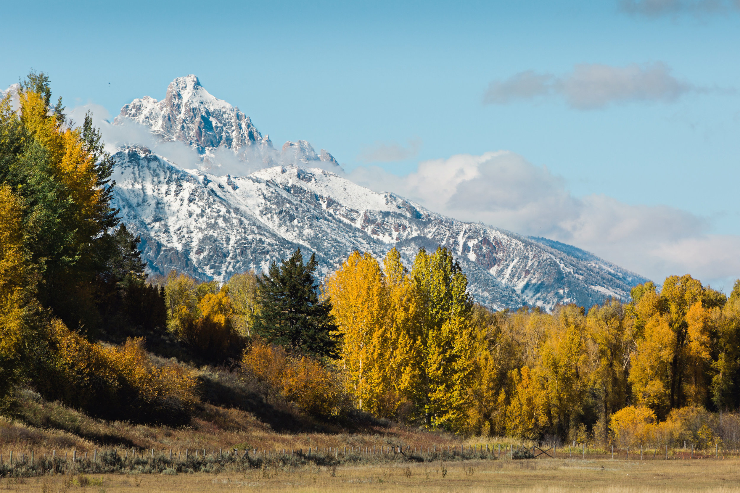 Cindy_Giovagnoli_Idaho_Wyoming_Grand_Teton_National_Park_autumn_aspens_camping_mountains-022.jpg