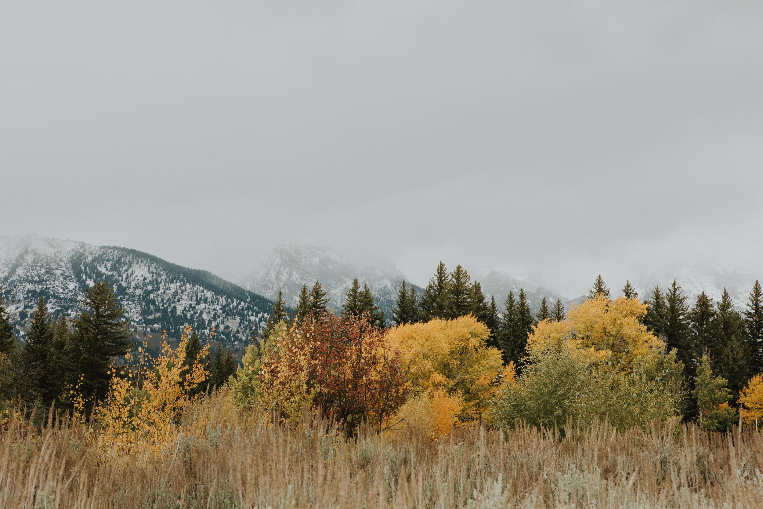 CindyGiovagnoli_Grand_Teton_National_Park_mountains_Bison_Autumn_Wyoming_Mormon_Row_aspens_fall_outdoor_photographer-004.jpg