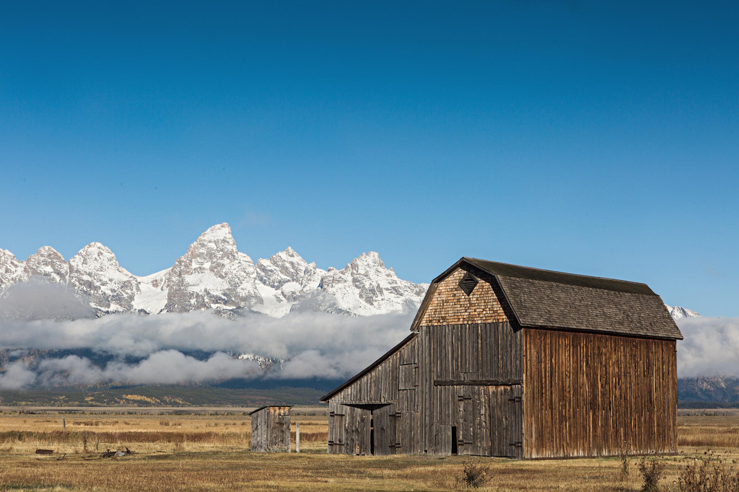 CindyGiovagnoli_Grand_Teton_National_Park_mountains_Bison_Autumn_Wyoming_Mormon_Row_aspens_fall_outdoor_photographer-005.jpg