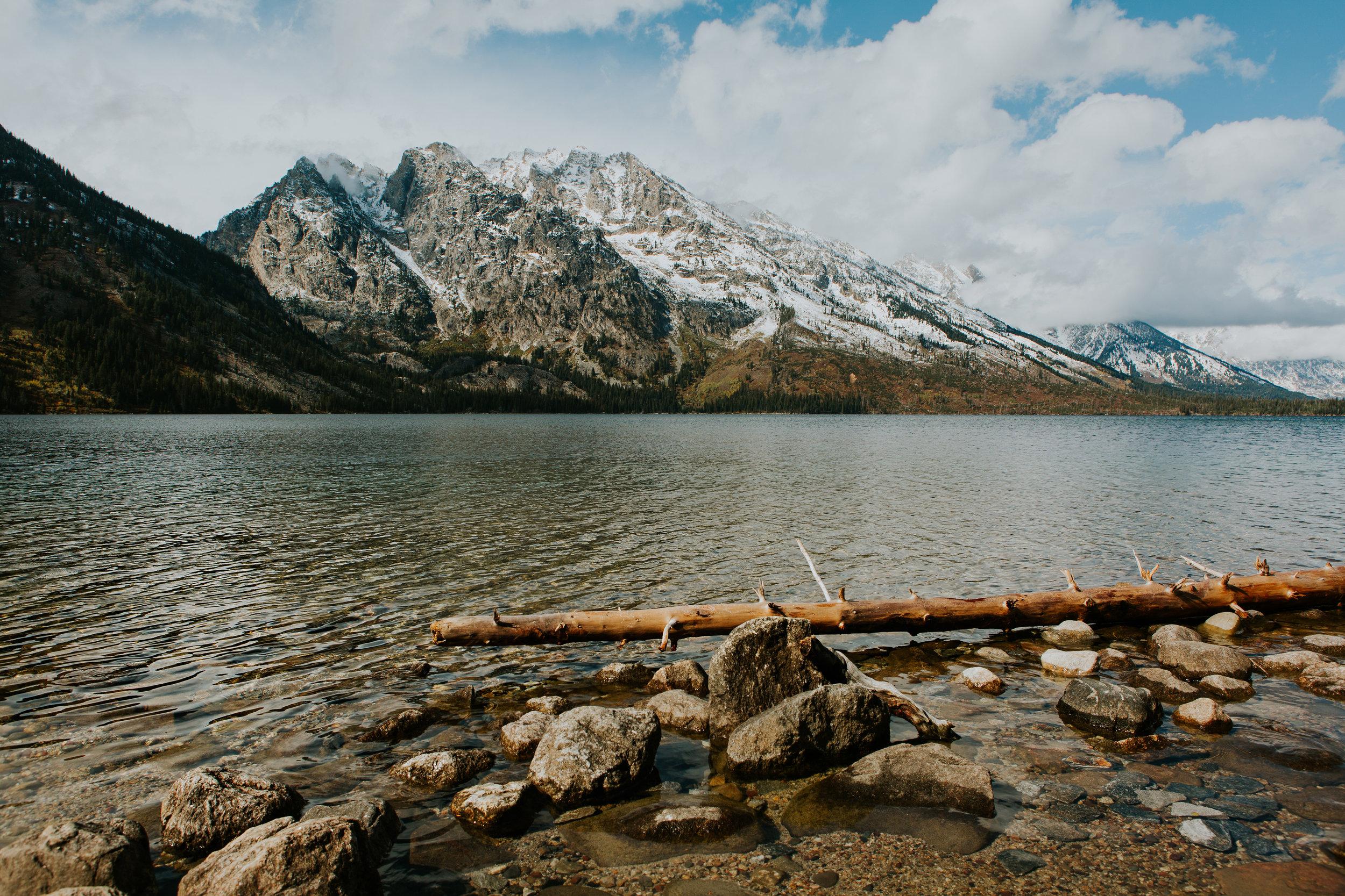 CindyGiovagnoli_Grand_Teton_National_Park_mountains_Bison_Autumn_Wyoming_Mormon_Row_aspens_fall_outdoor_photographer-006.jpg