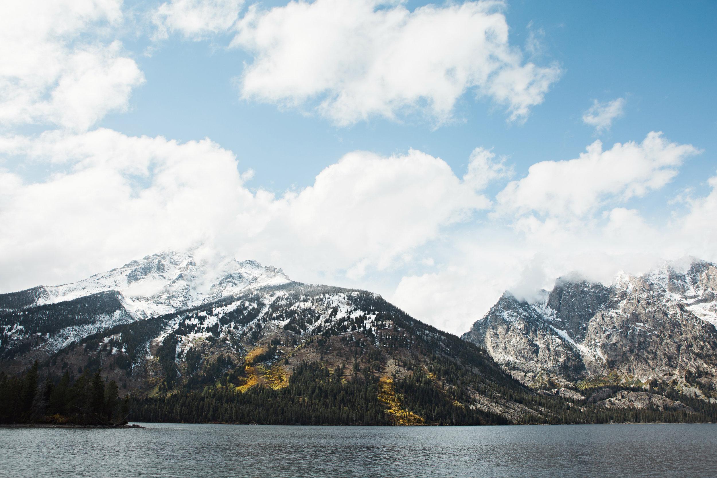 CindyGiovagnoli_Grand_Teton_National_Park_mountains_Bison_Autumn_Wyoming_Mormon_Row_aspens_fall_outdoor_photographer-020.jpg