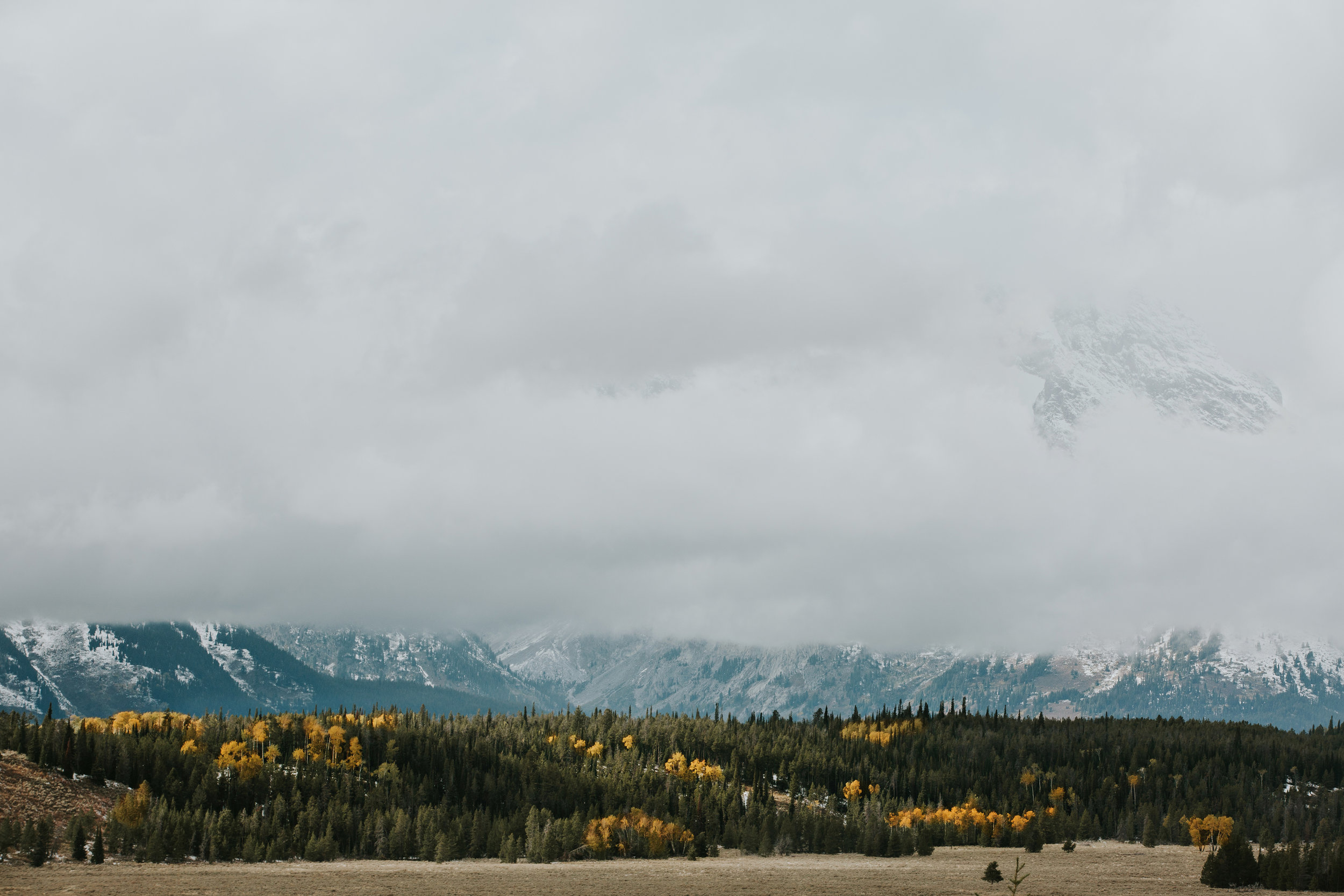 CindyGiovagnoli_Grand_Teton_National_Park_mountains_Bison_Autumn_Wyoming_Mormon_Row_aspens_fall_outdoor_photographer-022.jpg