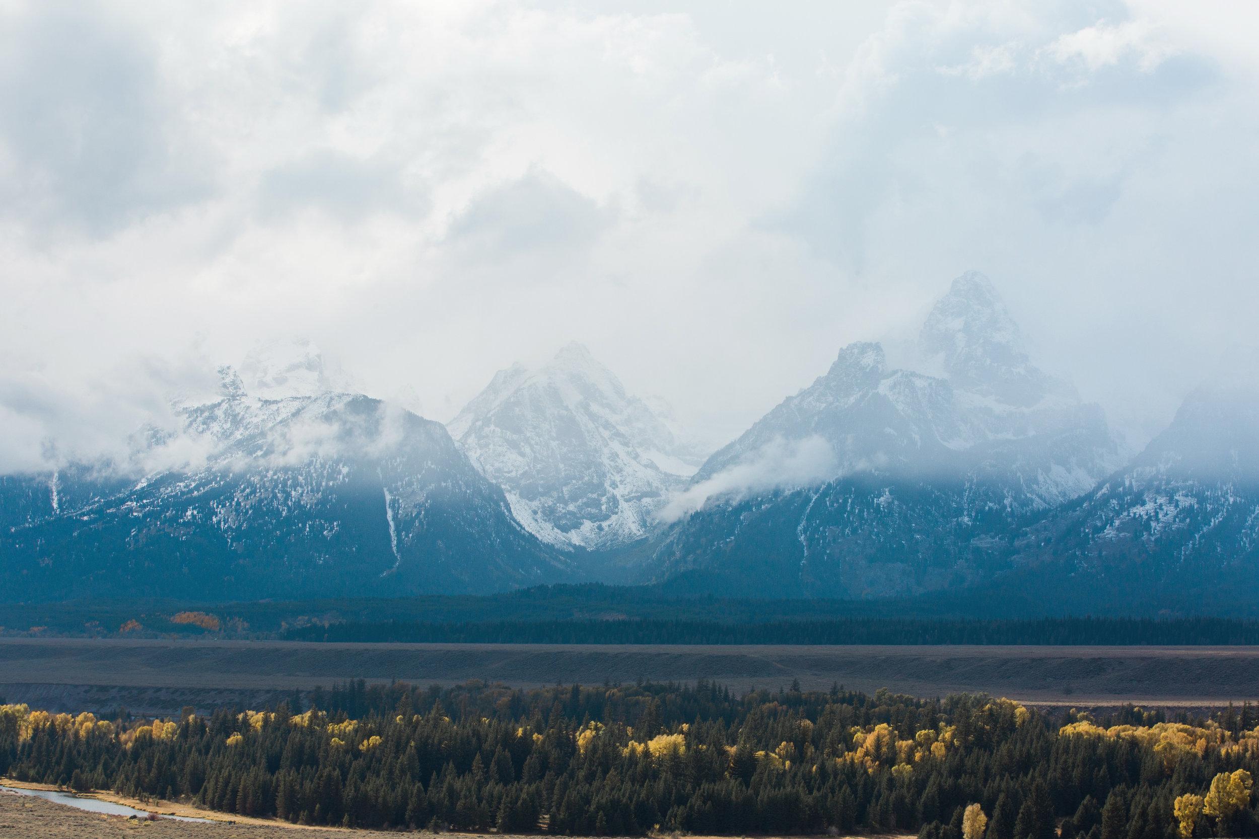 CindyGiovagnoli_Grand_Teton_National_Park_mountains_Bison_Autumn_Wyoming_Mormon_Row_aspens_fall_outdoor_photographer-029.jpg