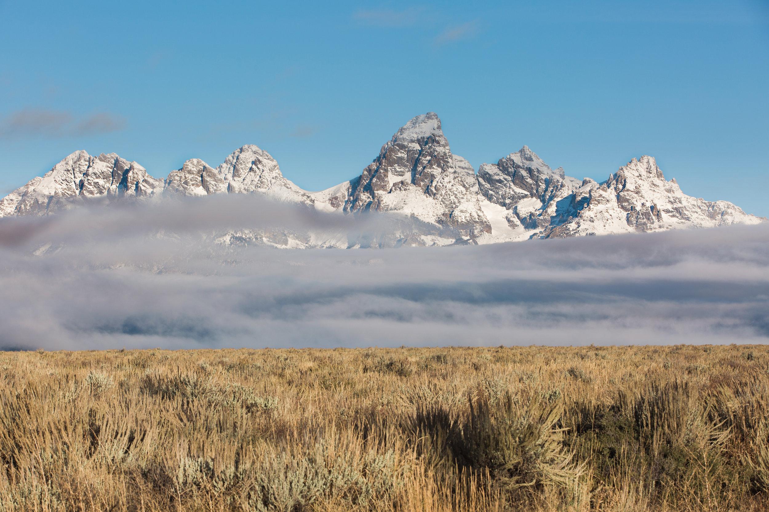 CindyGiovagnoli_Grand_Teton_National_Park_mountains_Bison_Autumn_Wyoming_Mormon_Row_aspens_fall_outdoor_photographer-034.jpg