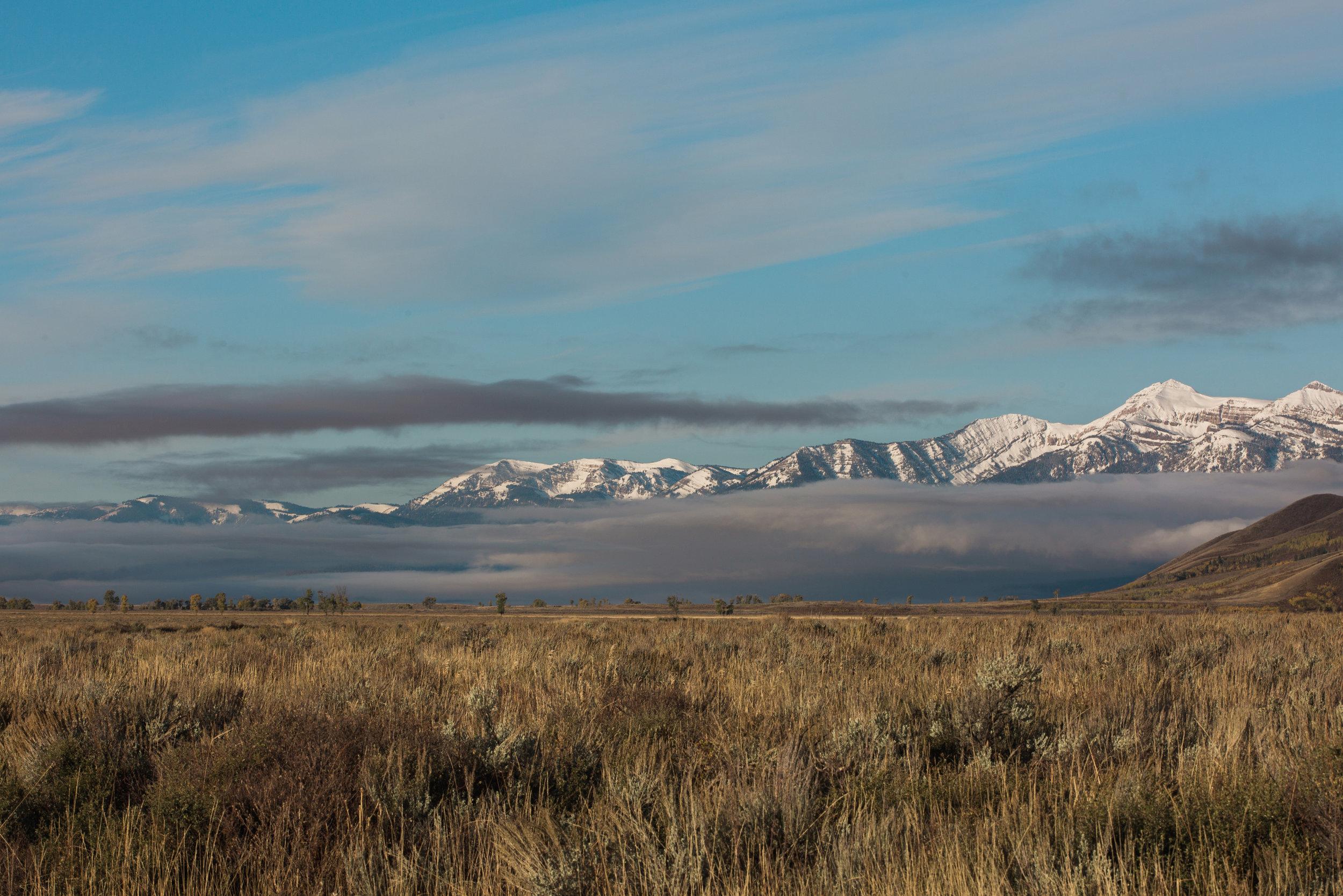 CindyGiovagnoli_Grand_Teton_National_Park_mountains_Bison_Autumn_Wyoming_Mormon_Row_aspens_fall_outdoor_photographer-039.jpg