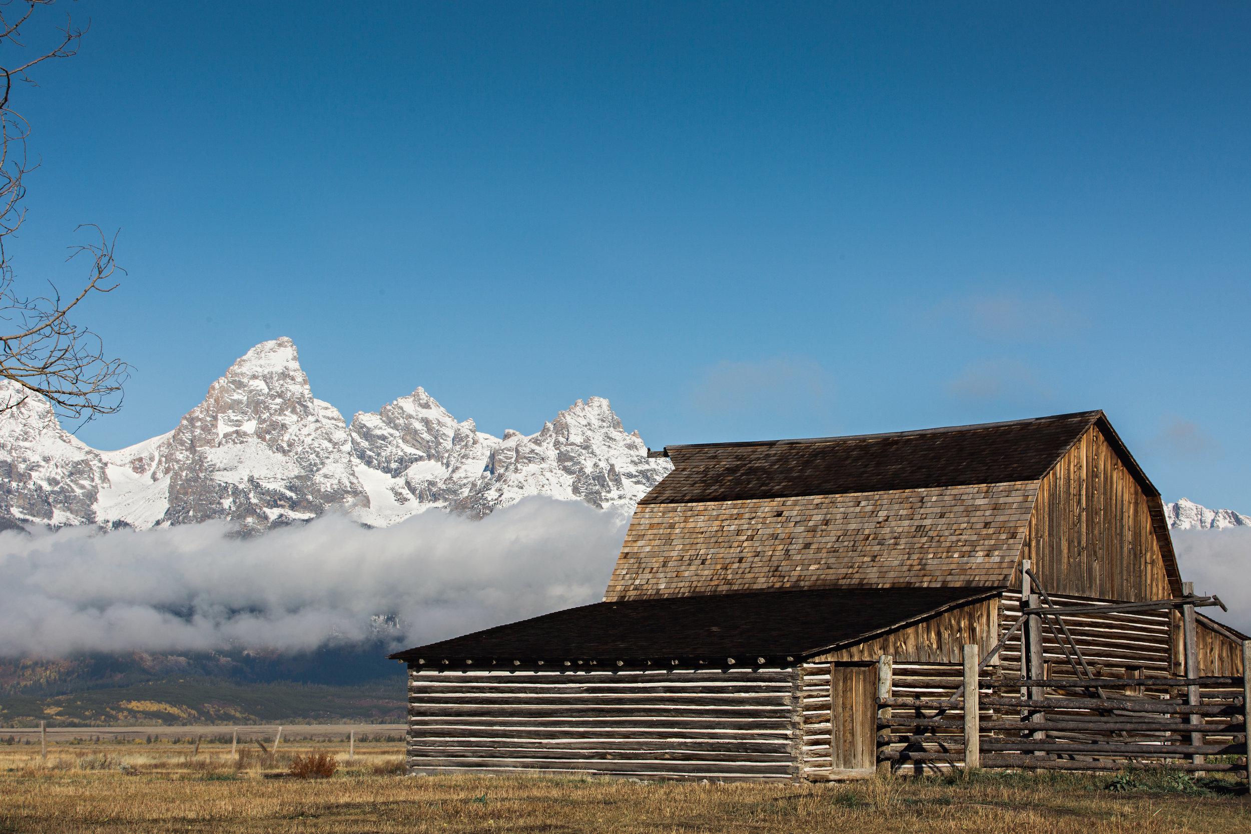 CindyGiovagnoli_Grand_Teton_National_Park_mountains_Bison_Autumn_Wyoming_Mormon_Row_aspens_fall_outdoor_photographer-044.jpg