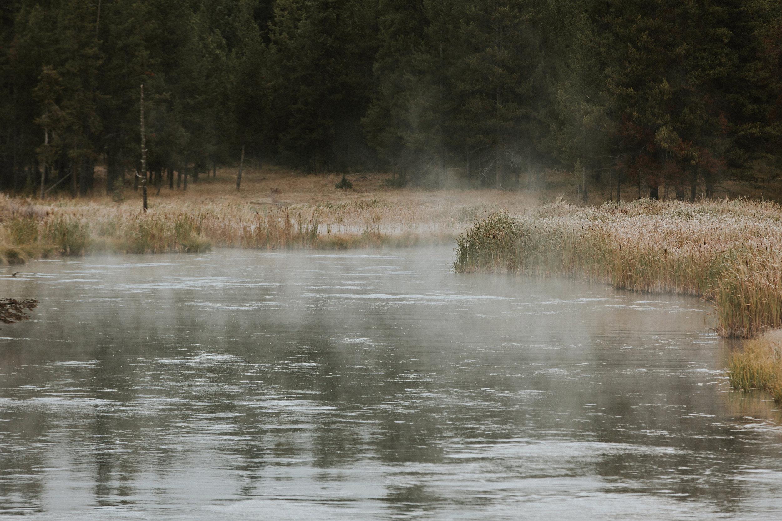 CindyGiovagnoli_Yellowstone_Grand_Teton_National_Park_Wyoming_mountains_deer_sunset_fall_autumn_October_alpenglow-003.jpg
