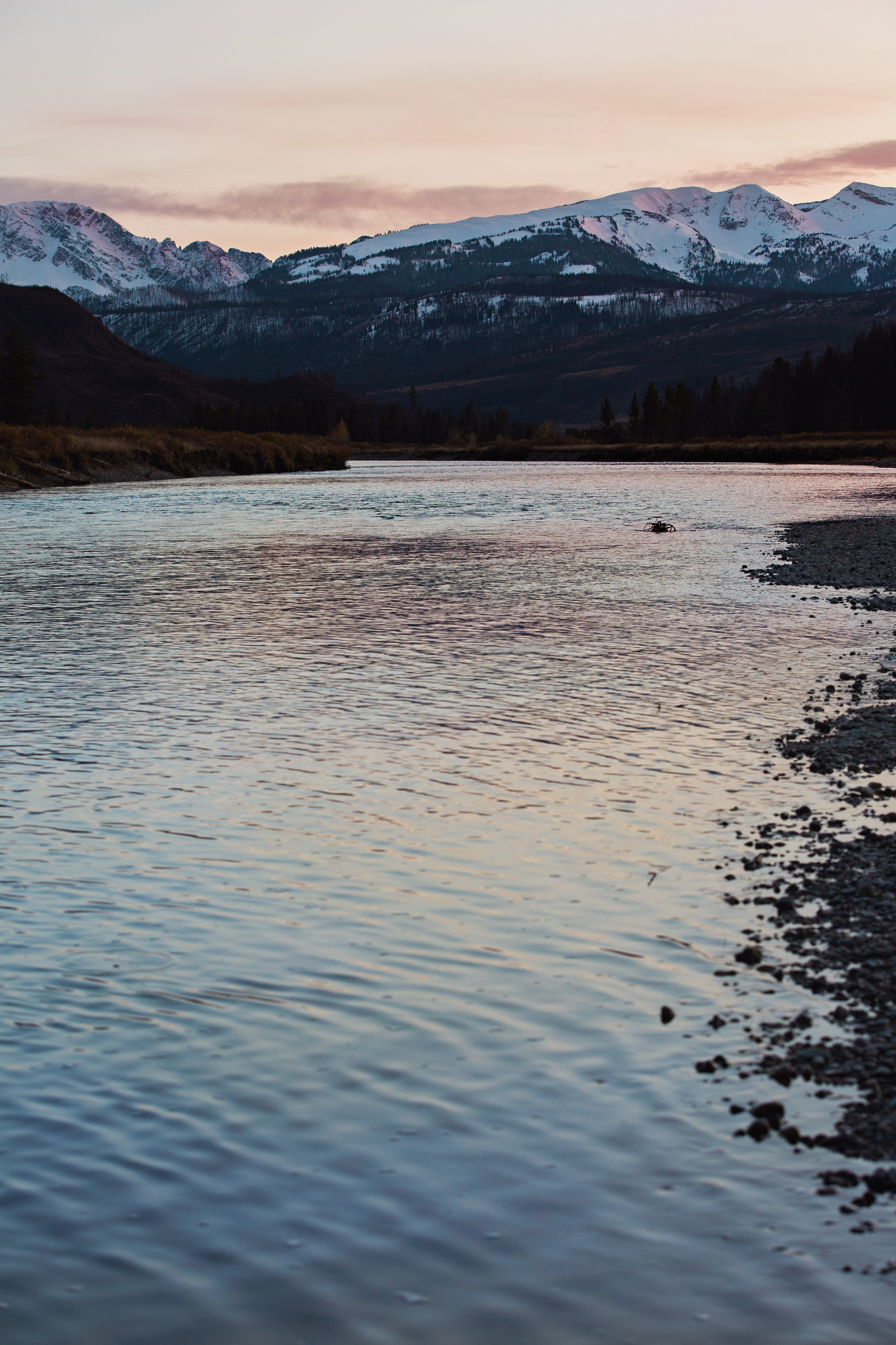 CindyGiovagnoli_Yellowstone_Grand_Teton_National_Park_Wyoming_mountains_deer_sunset_fall_autumn_October_alpenglow-005.jpg