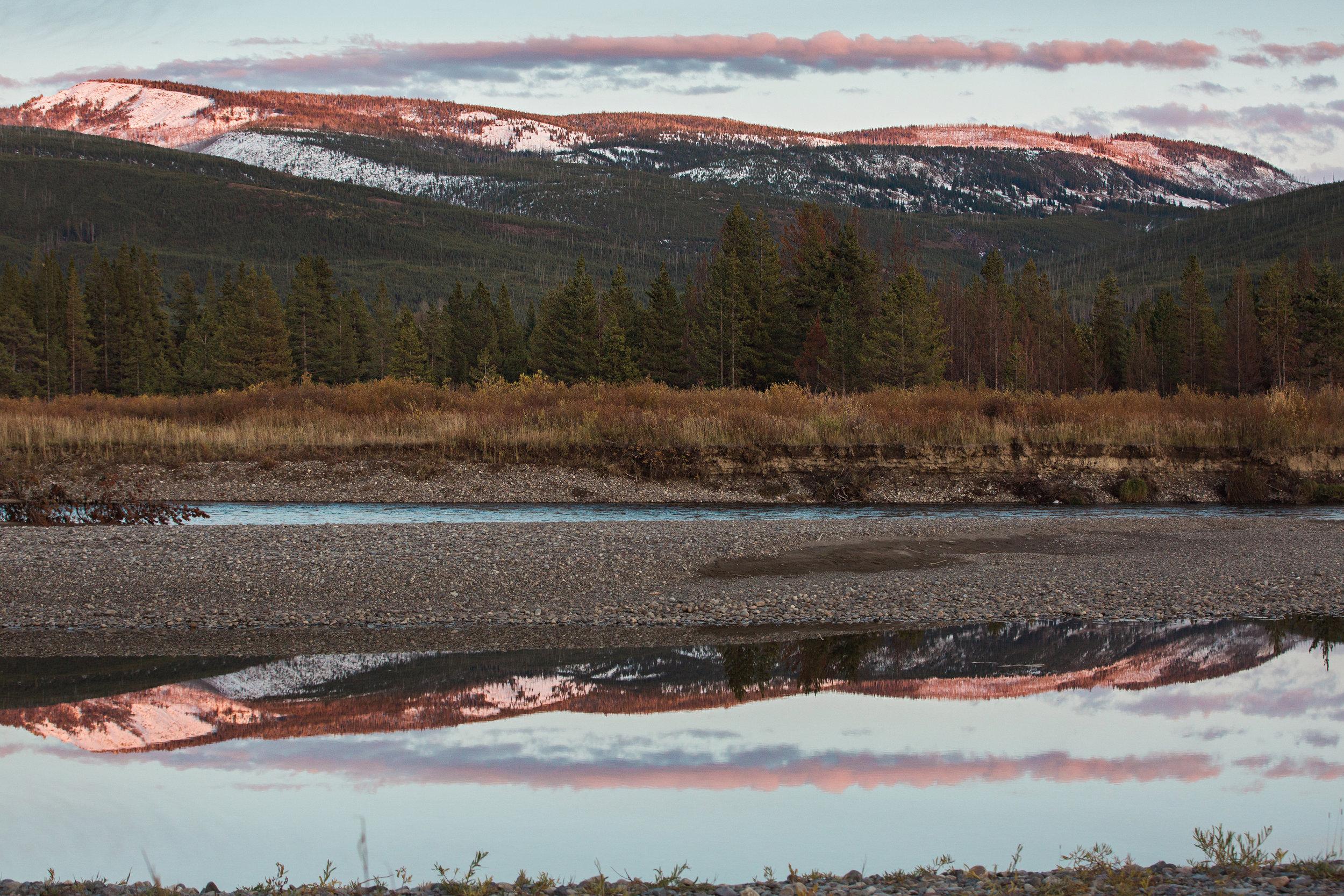 CindyGiovagnoli_Yellowstone_Grand_Teton_National_Park_Wyoming_mountains_deer_sunset_fall_autumn_October_alpenglow-007.jpg