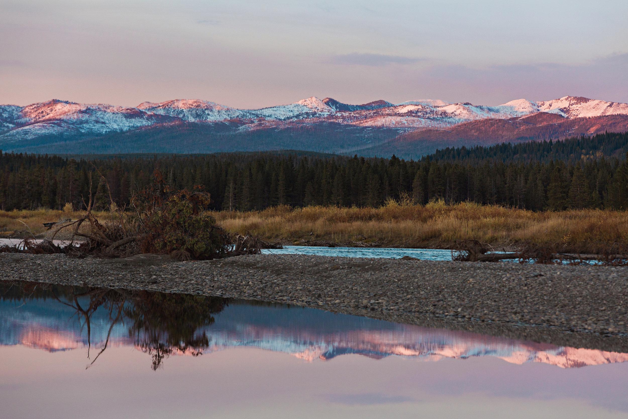 CindyGiovagnoli_Yellowstone_Grand_Teton_National_Park_Wyoming_mountains_deer_sunset_fall_autumn_October_alpenglow-010.jpg
