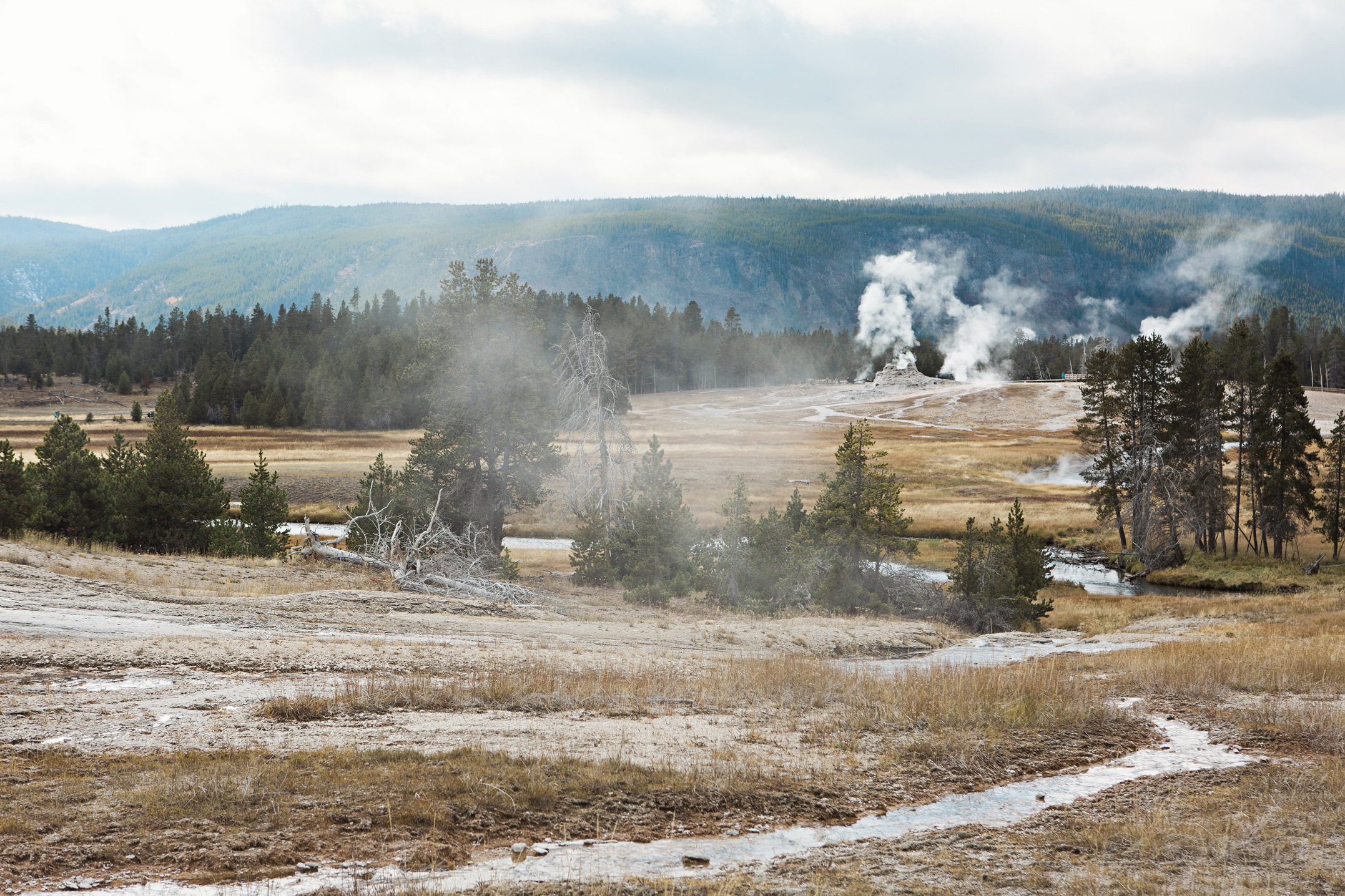CindyGiovagnoli_road_trip_Yellowstone_National_Park_Montana_Wyoming_hot_springs_geyser_Old_Faithful_Grand_Prismatic-005.jpg