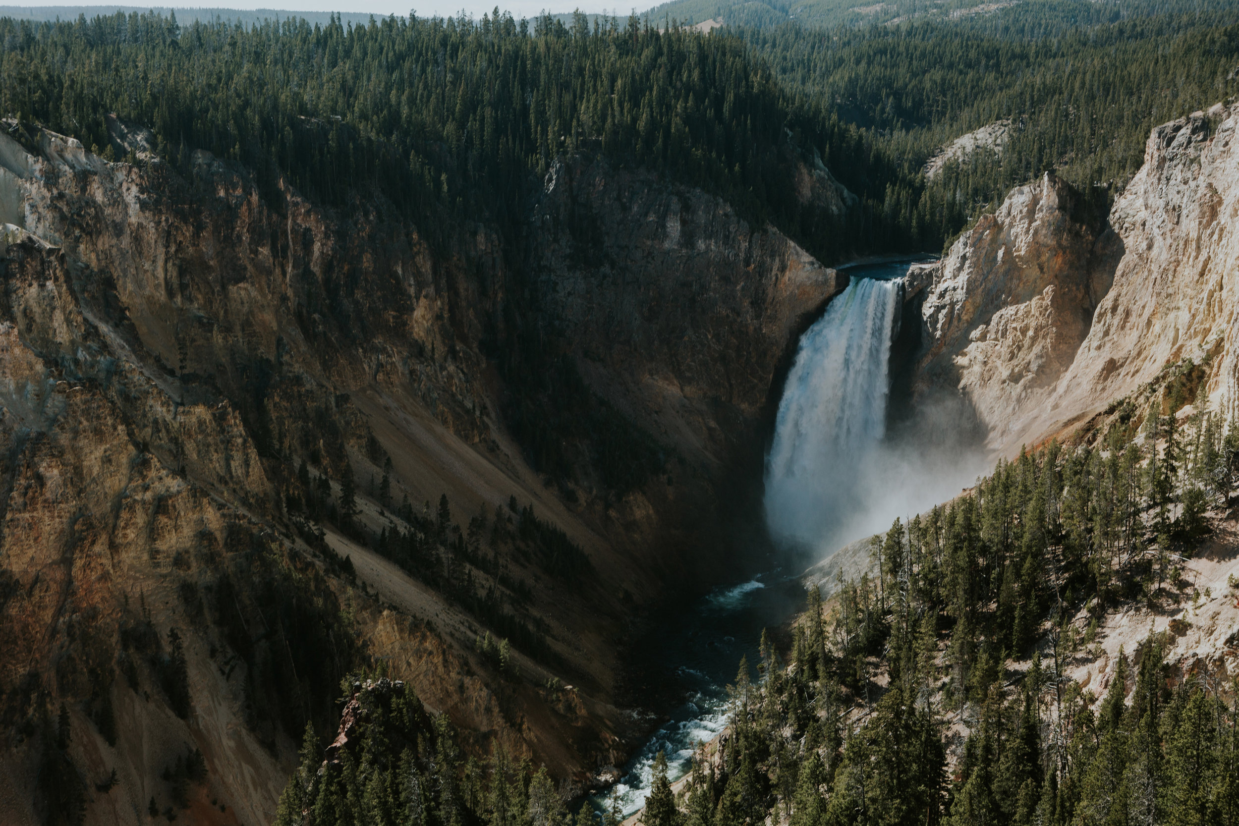 CindyGiovagnoli_Yellowstone_National_Park_Montana_Wyoming_bison_pronghorn_snow_elk_truckcamping-001.jpg