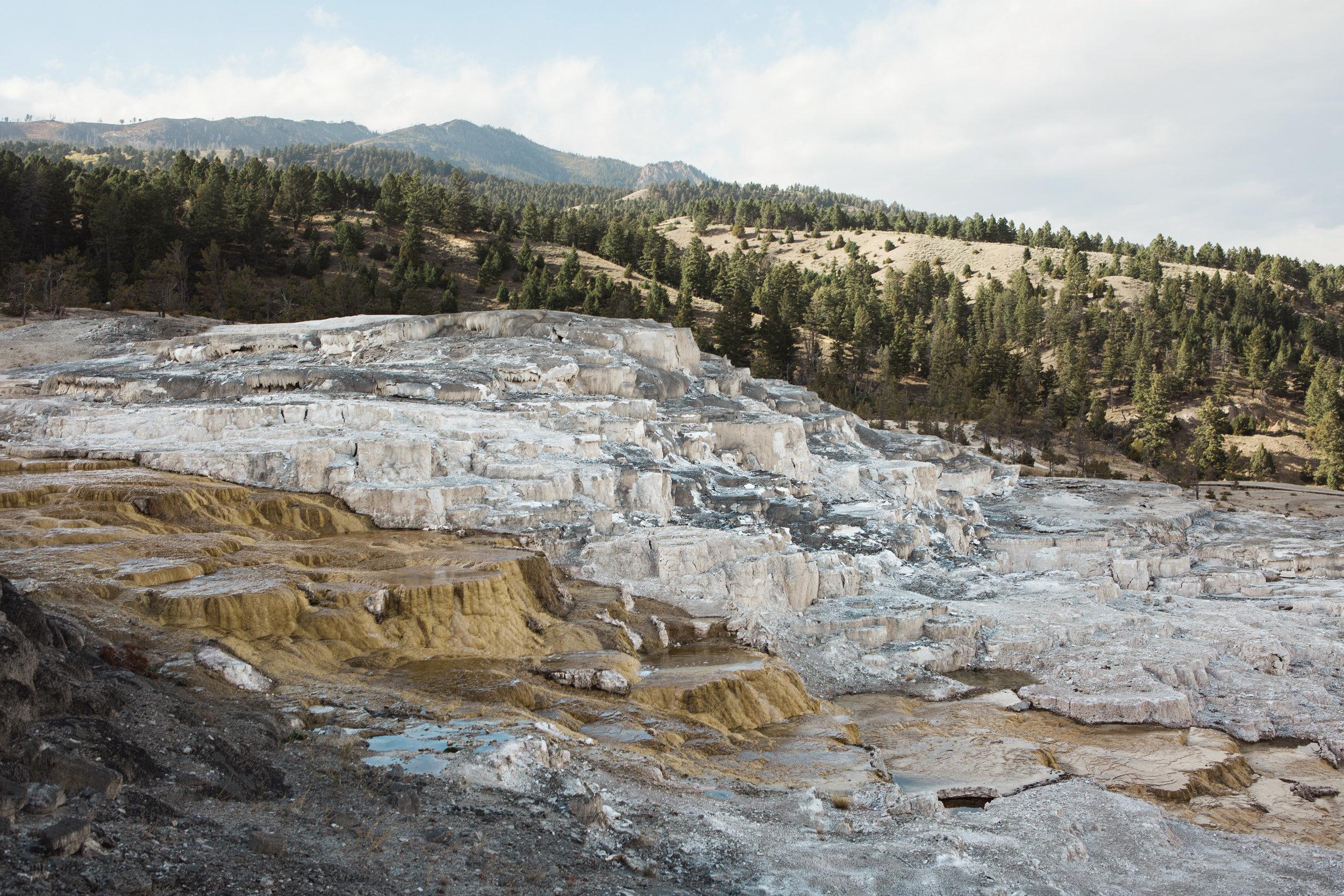 CindyGiovagnoli_Yellowstone_National_Park_Montana_Wyoming_bison_pronghorn_snow_elk_truckcamping-003.jpg
