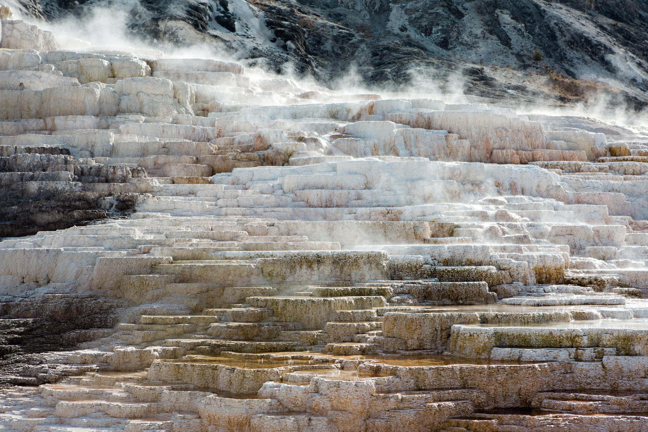 CindyGiovagnoli_Yellowstone_National_Park_Montana_Wyoming_bison_pronghorn_snow_elk_truckcamping-004.jpg
