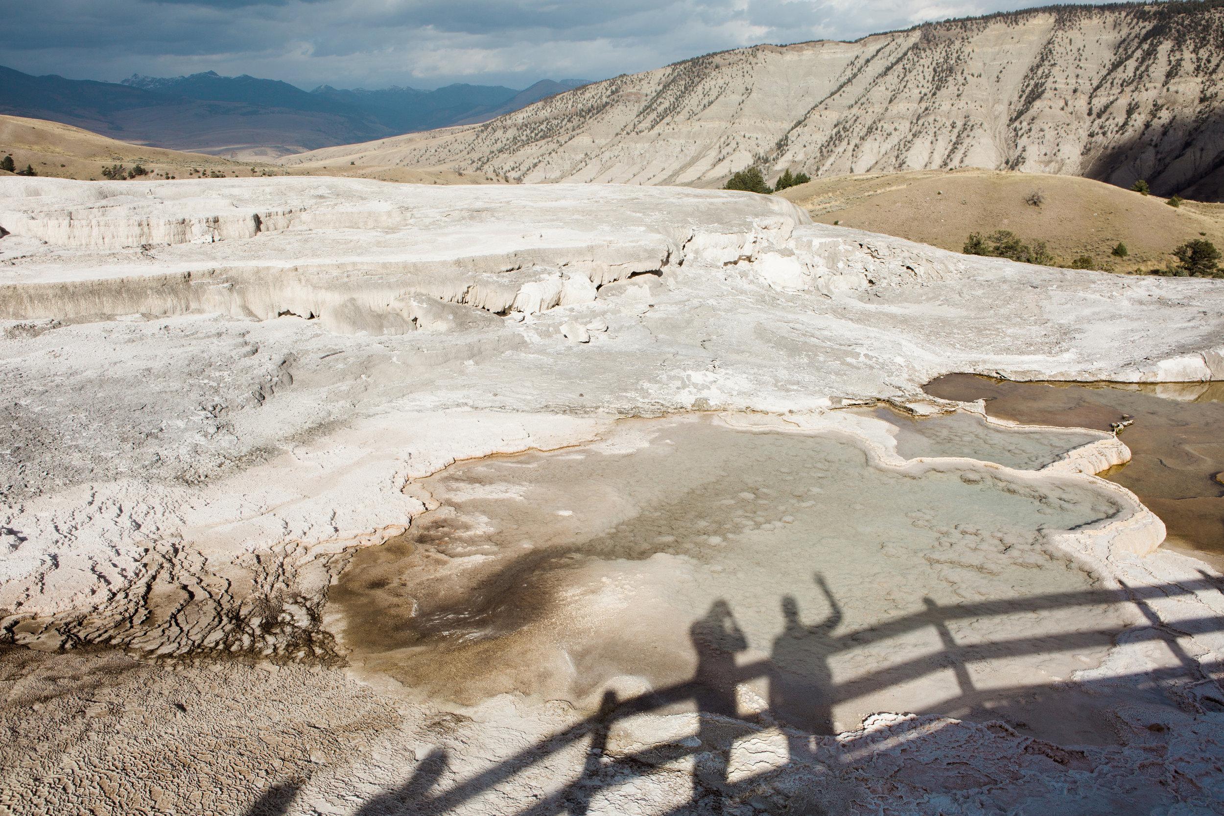 CindyGiovagnoli_Yellowstone_National_Park_Montana_Wyoming_bison_pronghorn_snow_elk_truckcamping-005.jpg